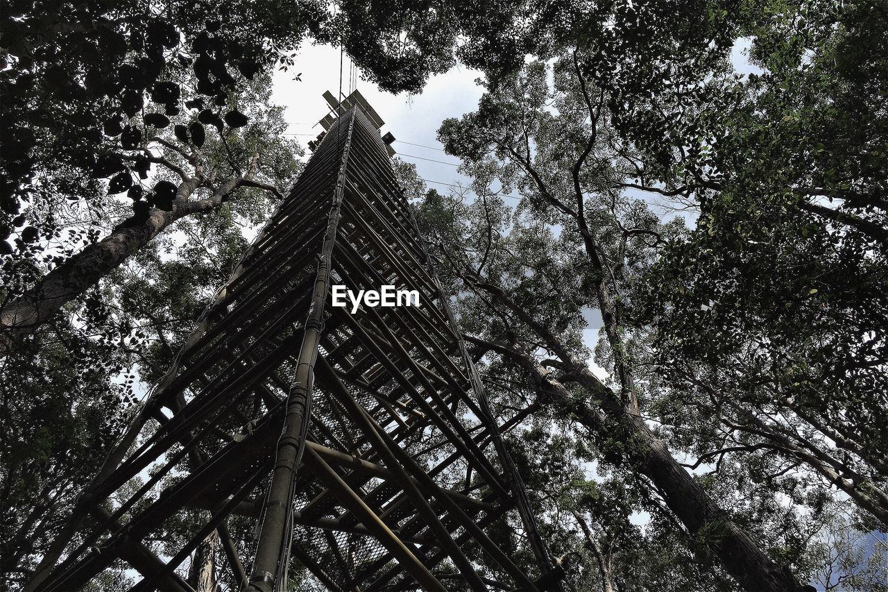 Low angle view of bird watching tower amidst trees at forest against sky