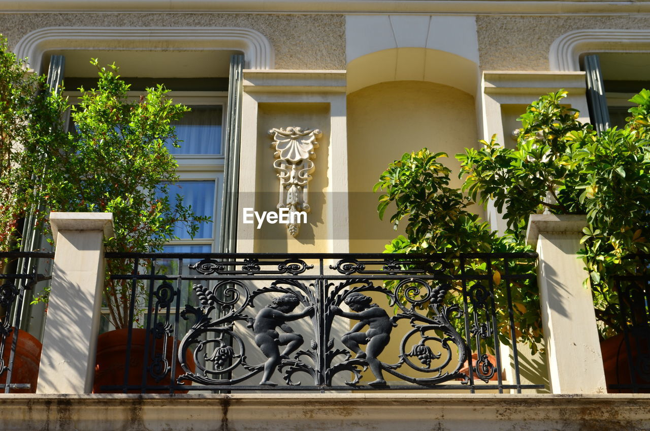 architecture, built structure, plant, building exterior, window, building, no people, day, growth, nature, railing, tree, potted plant, outdoors, house, architectural column, green color, residential district, entrance, balcony, wrought iron, balustrade