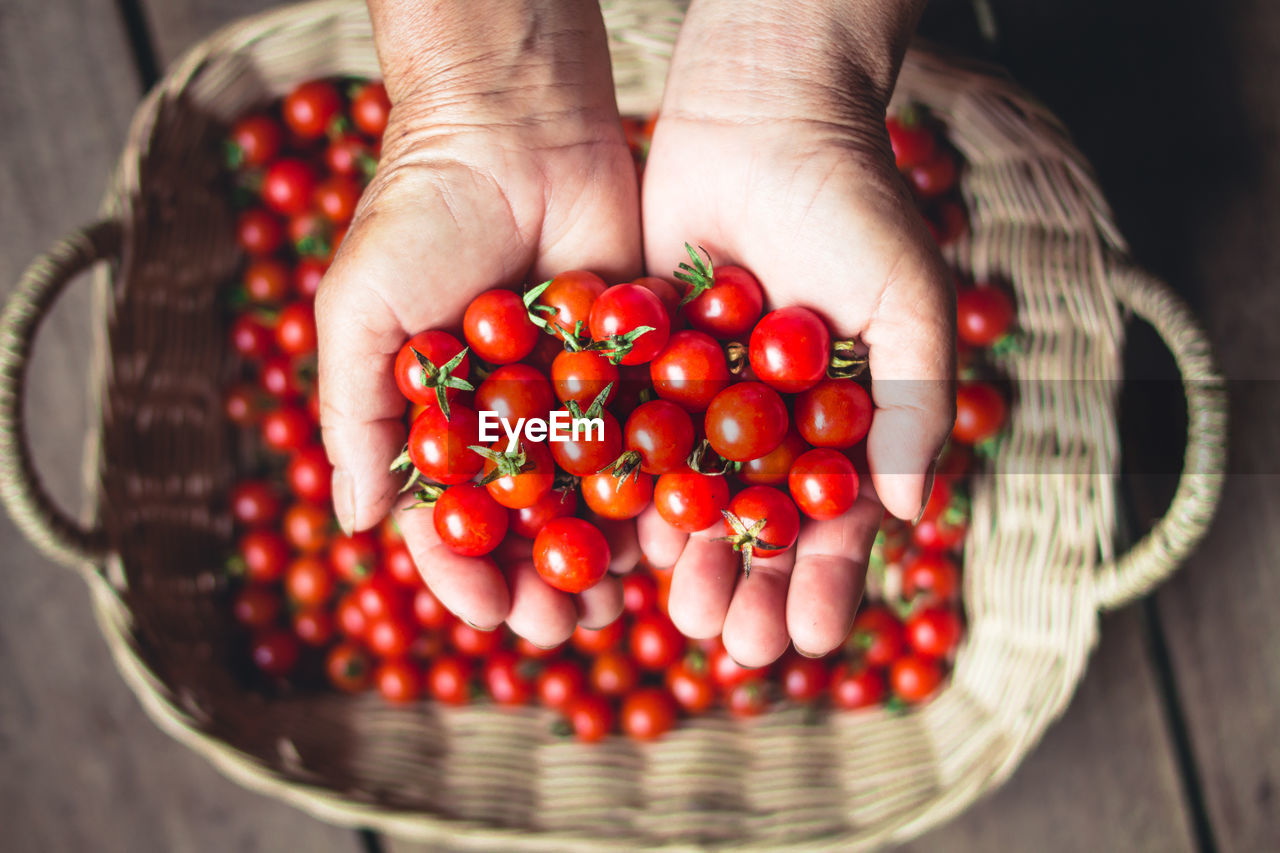 human hand, food, food and drink, hand, freshness, one person, healthy eating, red, human body part, fruit, real people, basket, container, wellbeing, holding, close-up, vegetable, large group of objects, focus on foreground, ripe, finger
