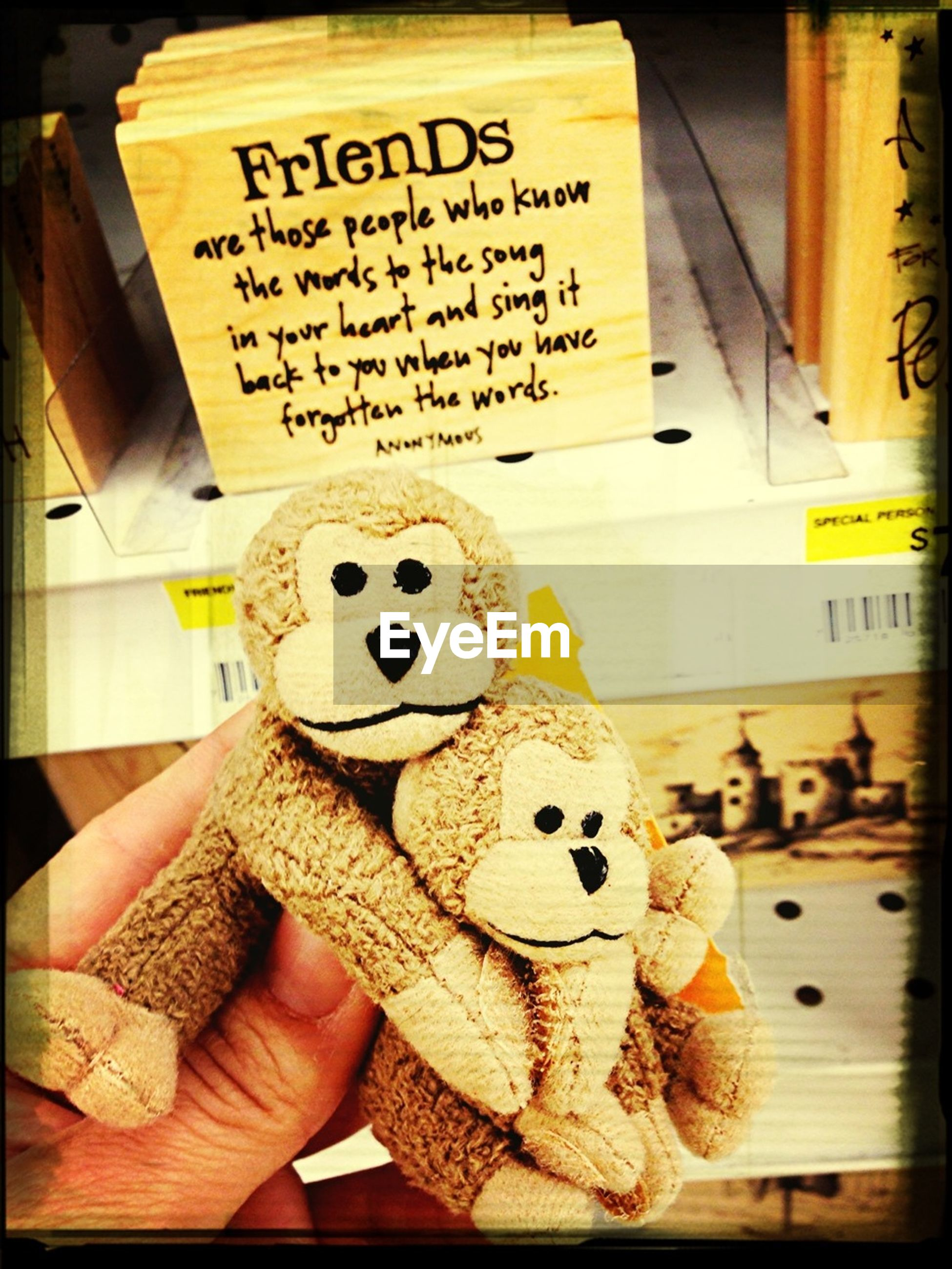 indoors, text, western script, communication, art, human representation, art and craft, creativity, non-western script, animal representation, stuffed toy, toy, for sale, paper, store, shop, book, variation, close-up