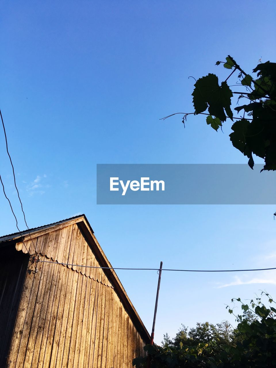 sky, tree, plant, low angle view, built structure, nature, architecture, blue, clear sky, no people, day, growth, building exterior, outdoors, cable, sunlight, building, house, copy space, silhouette