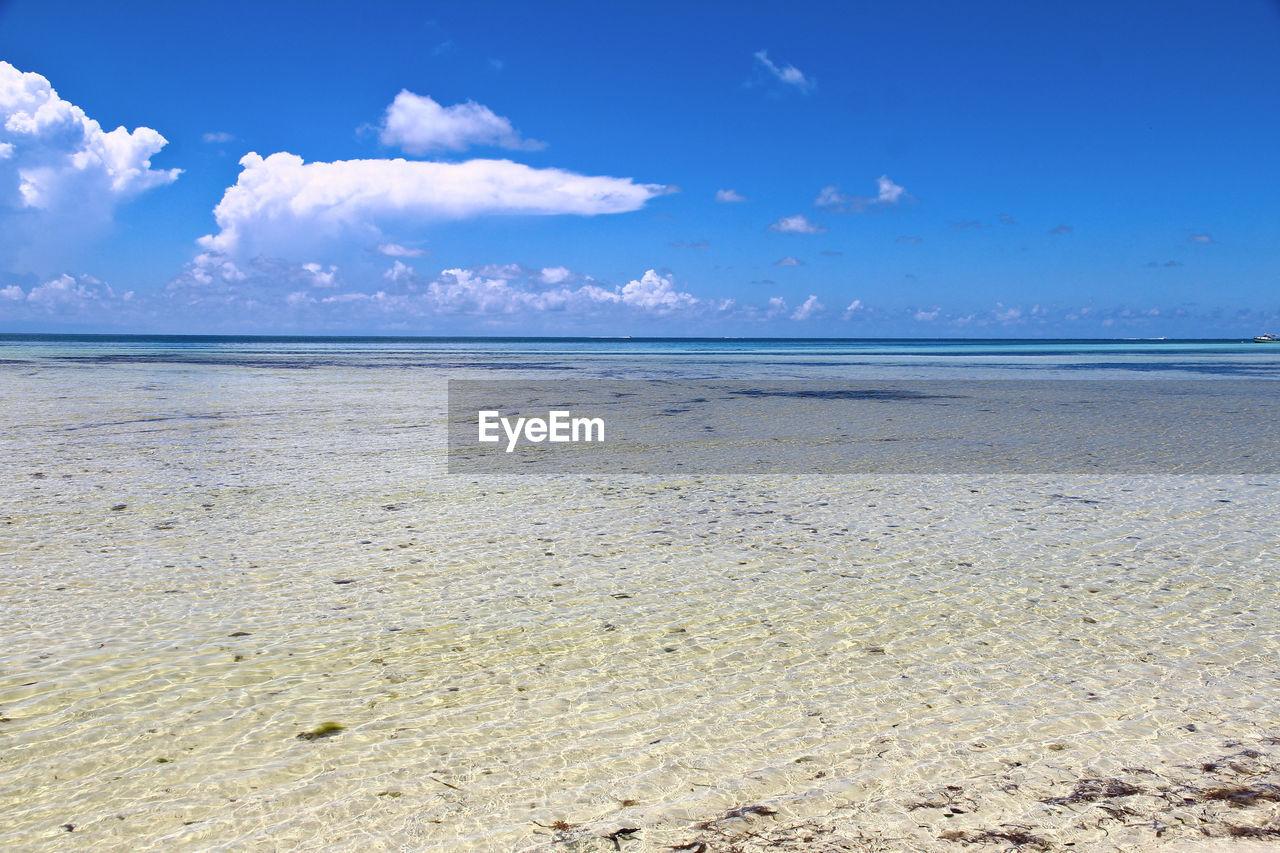 sea, sky, beauty in nature, scenics, tranquility, tranquil scene, nature, beach, horizon over water, water, cloud - sky, sand, blue, idyllic, outdoors, no people, day