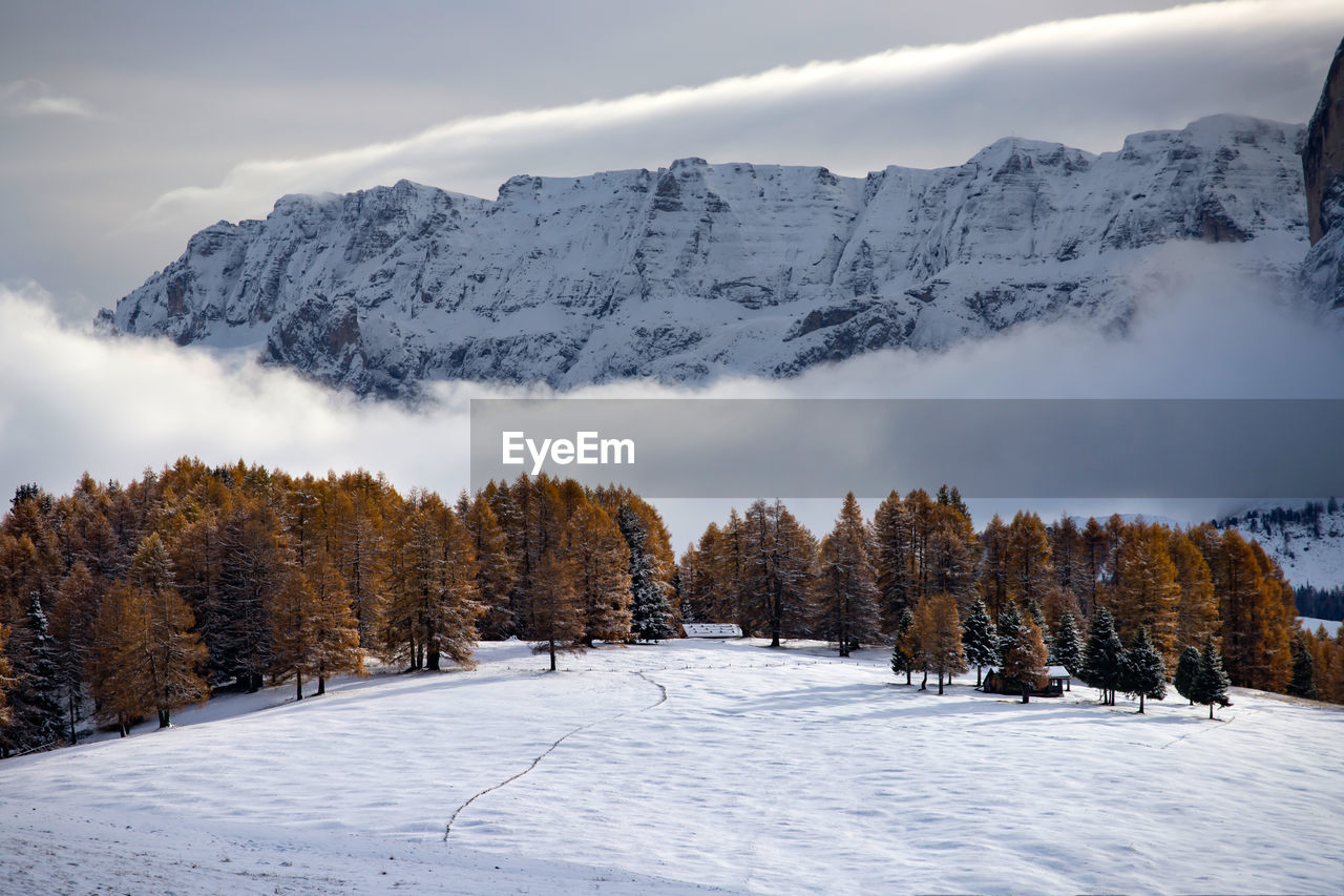 snow, winter, cold temperature, beauty in nature, scenics - nature, tree, mountain, tranquil scene, tranquility, sky, plant, covering, nature, non-urban scene, white color, no people, environment, cloud - sky, land, snowcapped mountain, mountain range, outdoors, coniferous tree, mountain peak