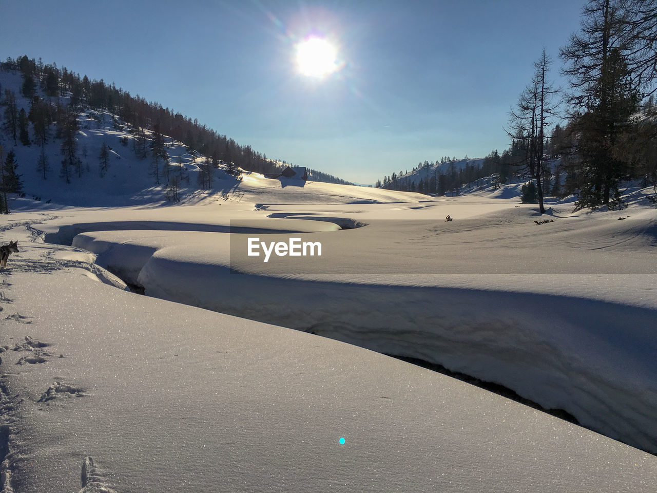 snow, winter, cold temperature, sky, sun, tranquil scene, sunlight, nature, scenics - nature, beauty in nature, tree, tranquility, lens flare, land, day, sunbeam, non-urban scene, plant, no people, bright, snowcapped mountain