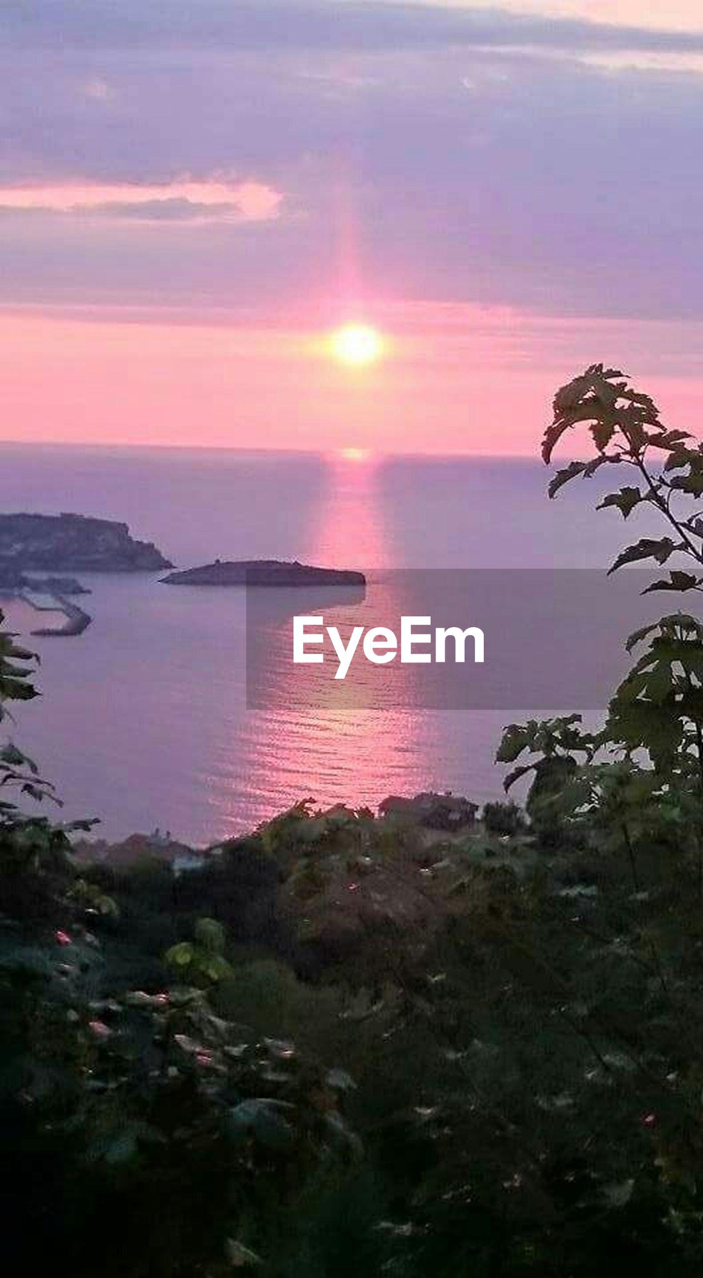 sea, horizon over water, sunset, water, scenics, tranquil scene, beauty in nature, tranquility, sun, sky, orange color, nature, idyllic, beach, reflection, sunlight, tree, seascape, shore, cloud - sky