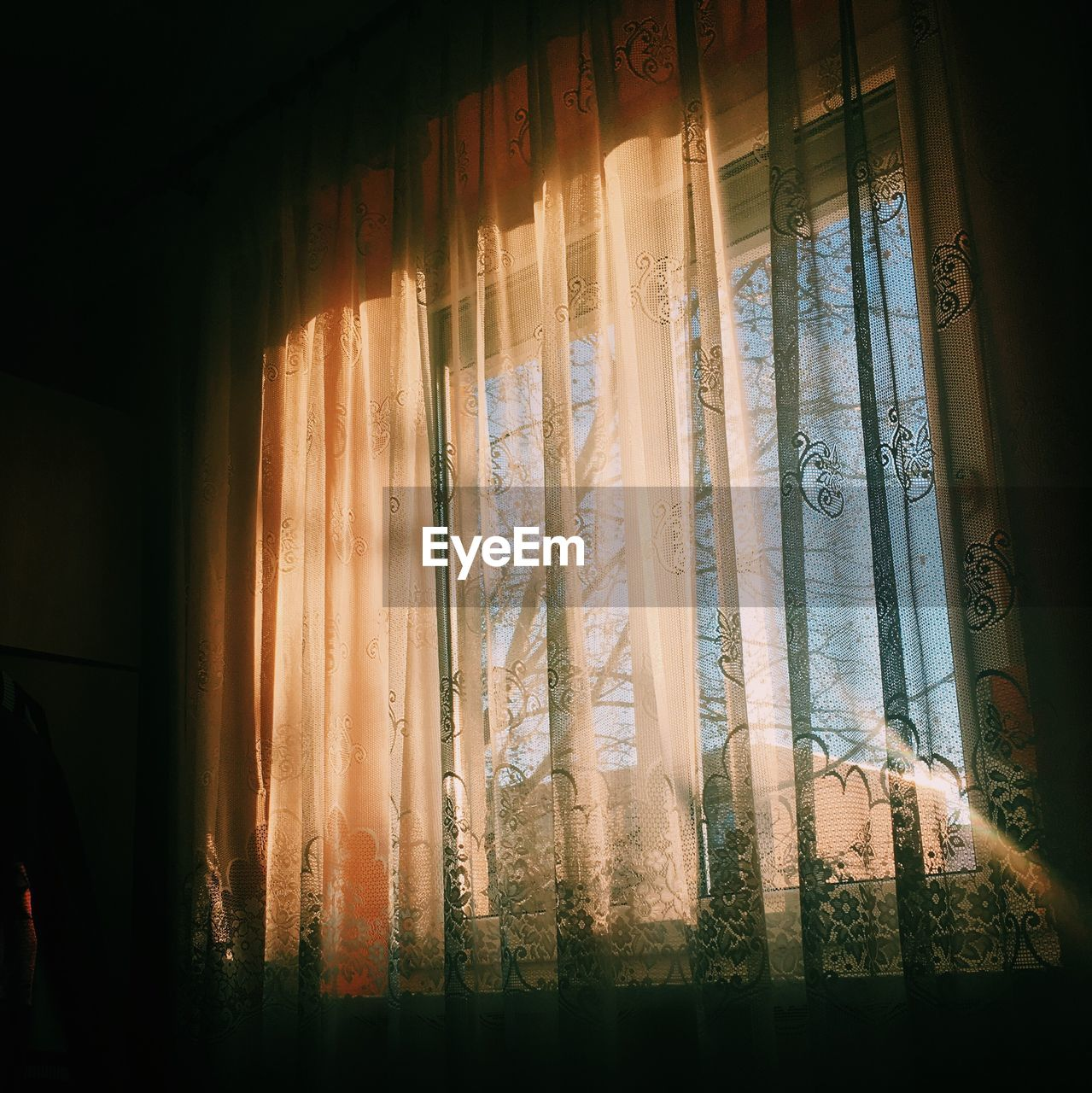 curtain, window, drapes, indoors, home interior, no people, day, close-up
