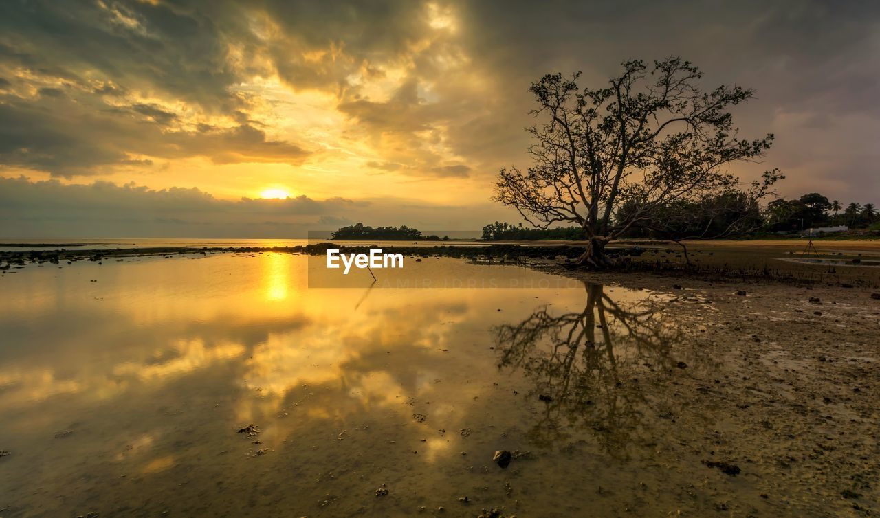 sky, cloud - sky, sunset, tranquility, beauty in nature, tranquil scene, reflection, scenics - nature, water, tree, nature, no people, land, plant, non-urban scene, idyllic, beach, orange color, lake, outdoors