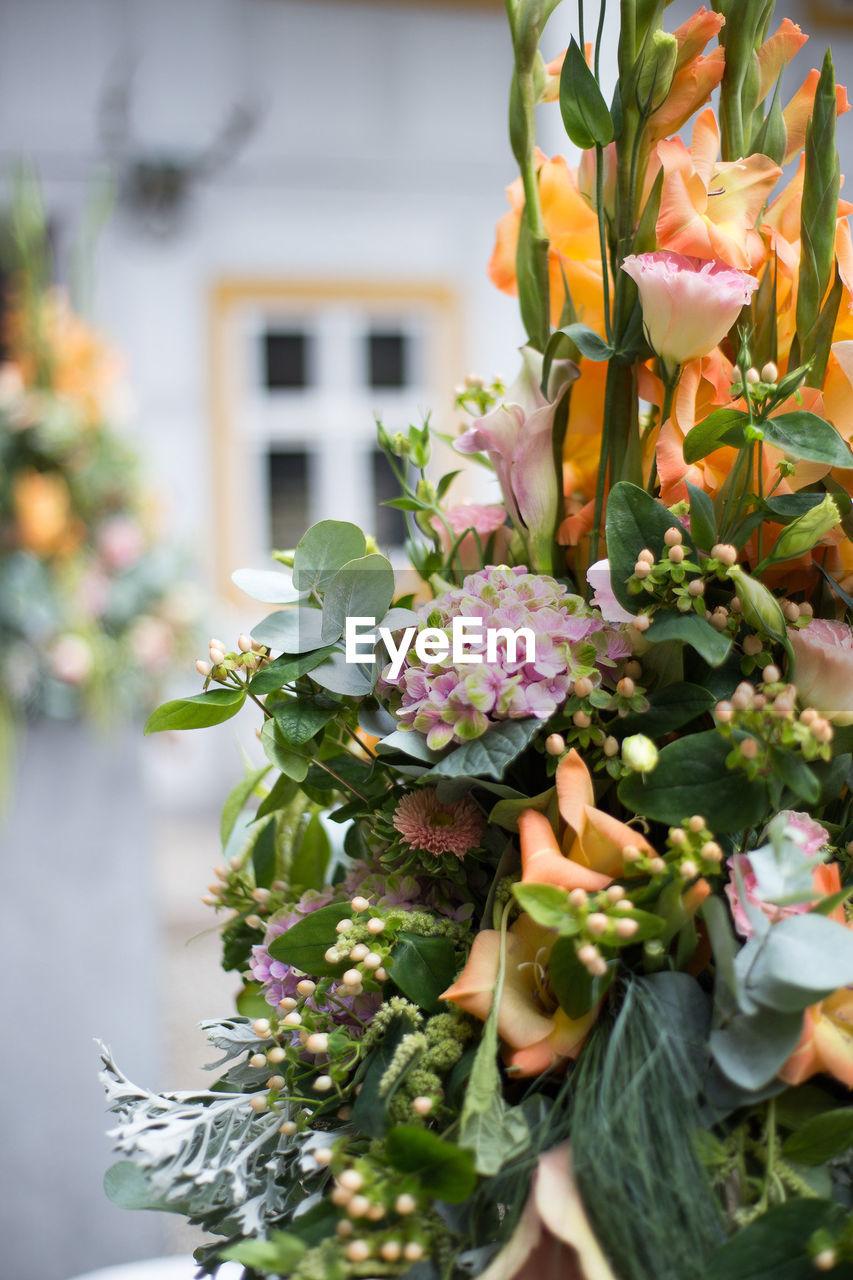 Close-up of flower arrangement