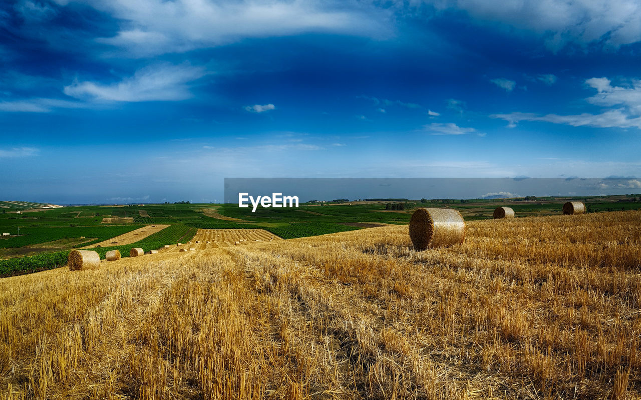 agriculture, bale, field, rural scene, tranquil scene, tranquility, landscape, farm, harvesting, hay bale, beauty in nature, sky, crop, hay, nature, scenics, day, blue, no people, outdoors, cloud - sky