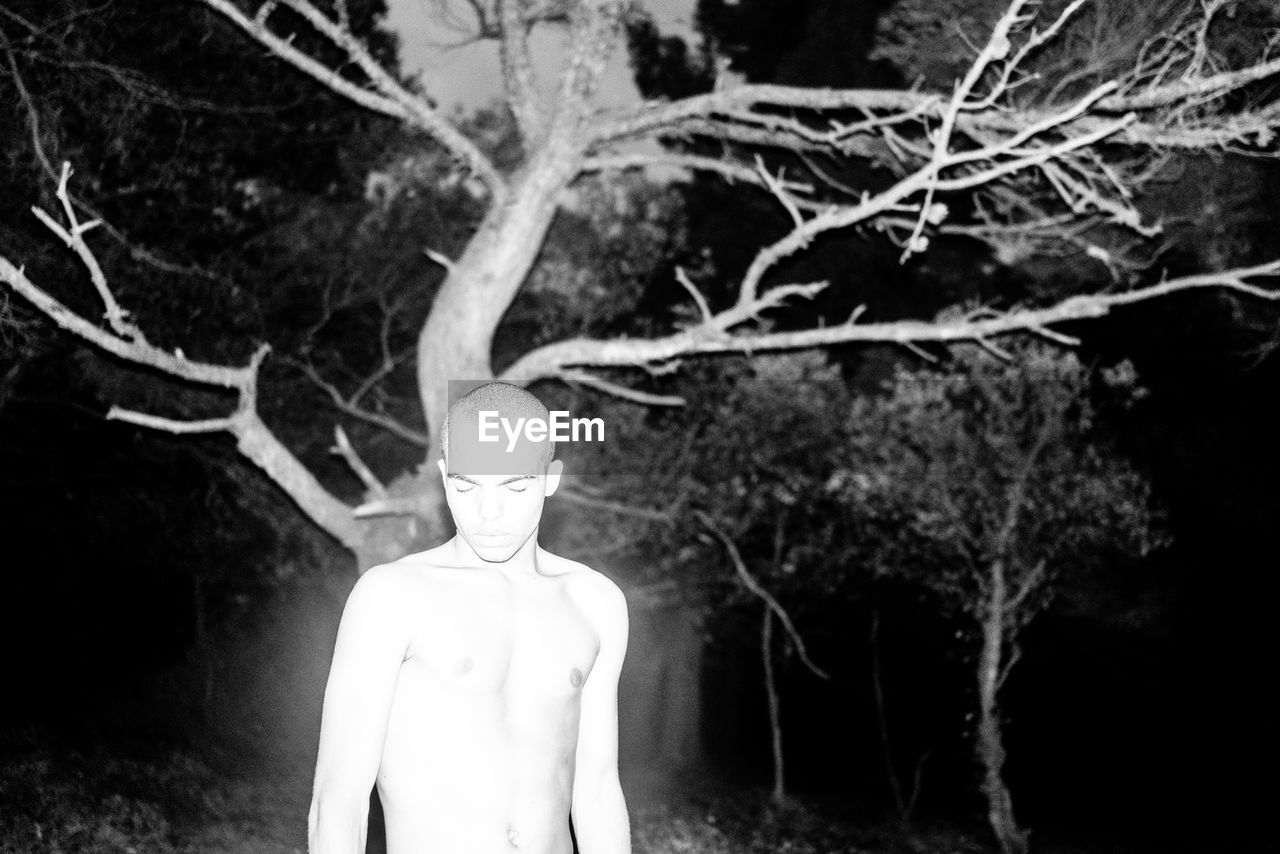 tree, shirtless, focus on foreground, outdoors, night, one person, close-up, people