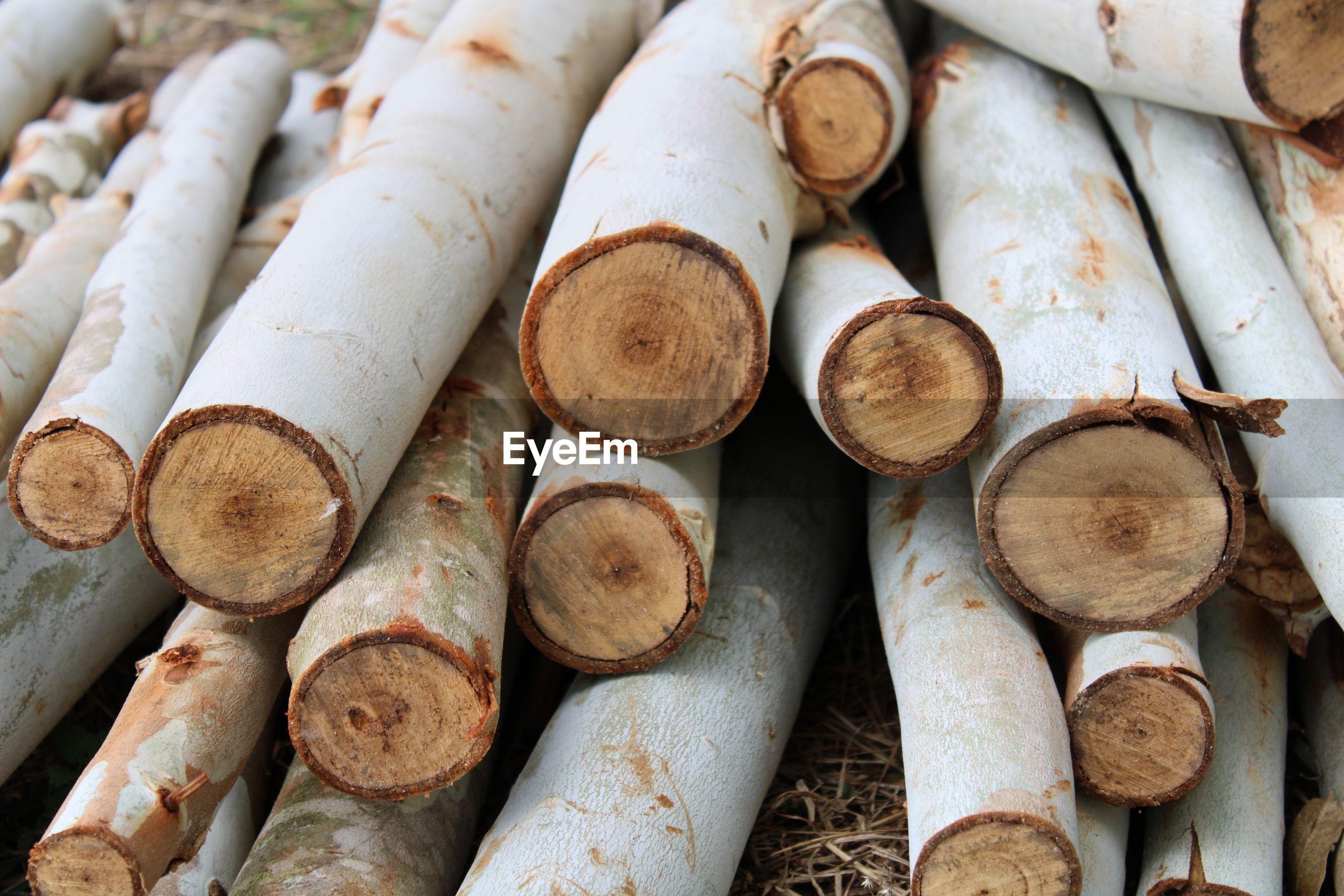 Firewoods pile