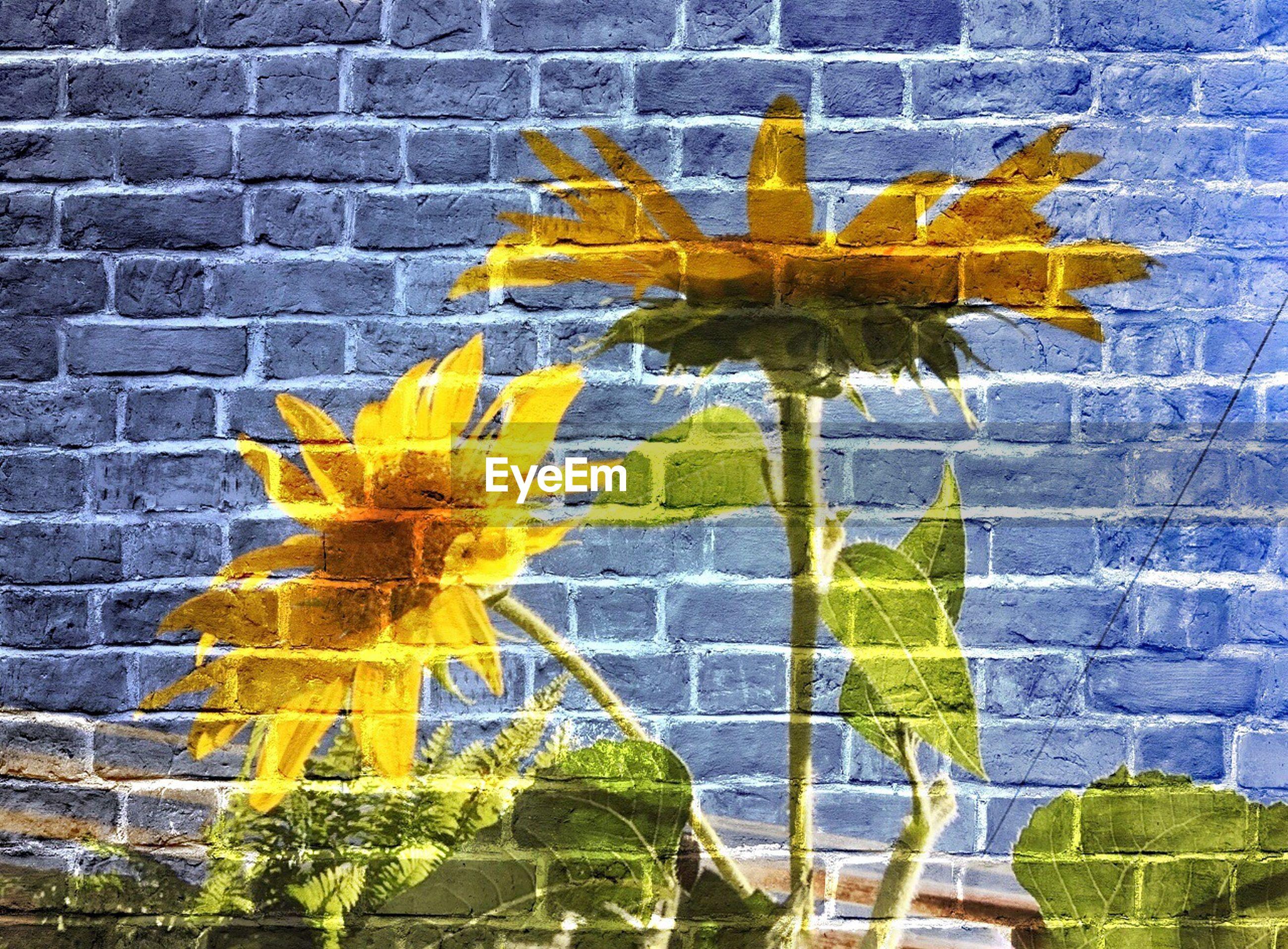 Close-up of graffiti on blue brick wall