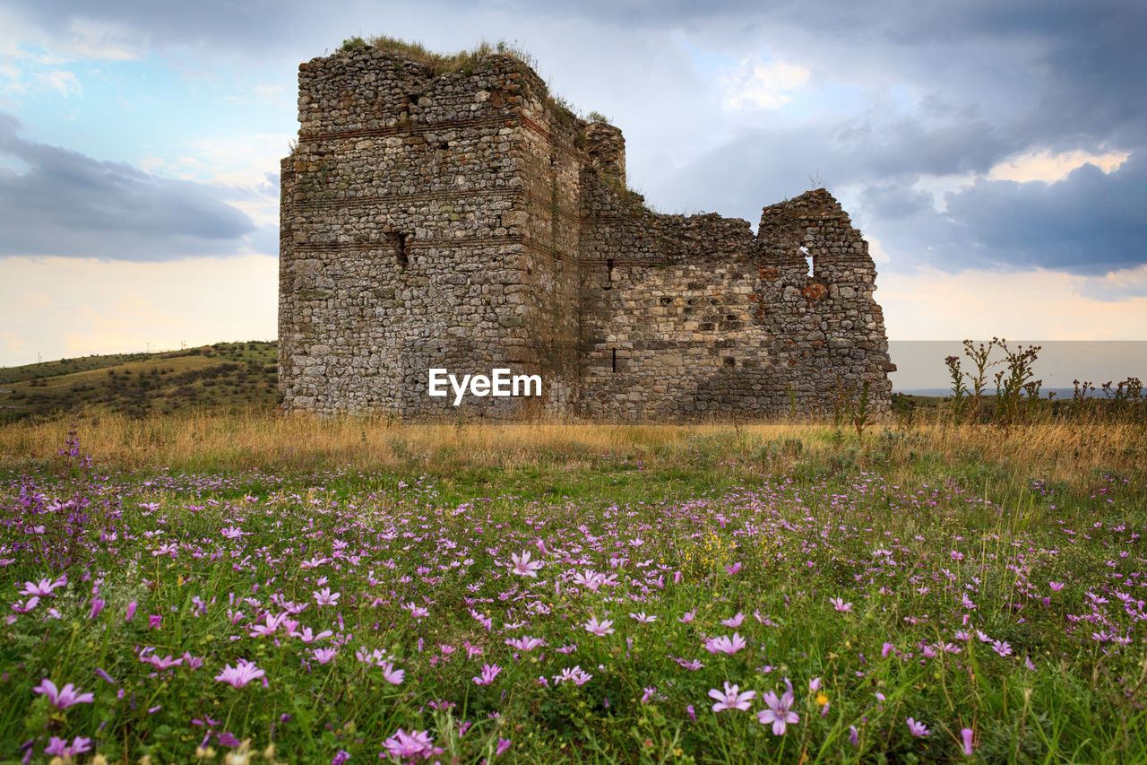 plant, the past, history, sky, flowering plant, flower, architecture, built structure, land, cloud - sky, nature, building exterior, field, old ruin, growth, old, no people, travel destinations, grass, beauty in nature, outdoors, ruined
