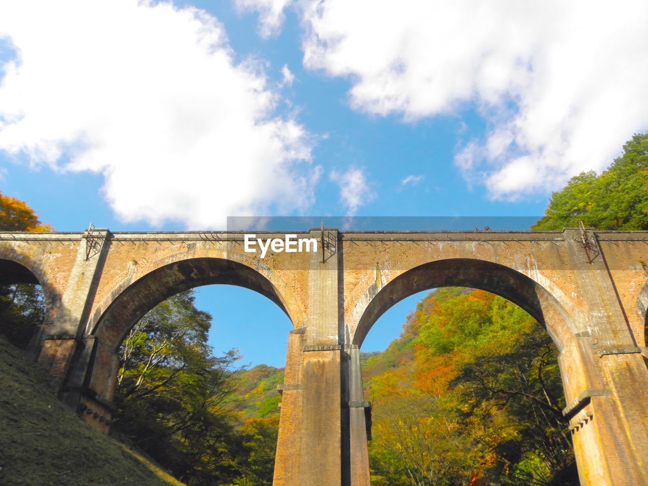arch, built structure, sky, architecture, cloud - sky, tree, bridge - man made structure, bridge, connection, day, nature, plant, no people, low angle view, transportation, viaduct, arch bridge, outdoors, architectural column, growth, arched