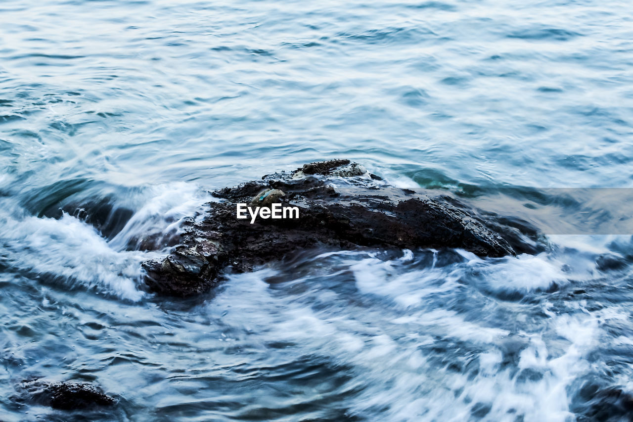 sea, water, nature, waterfront, outdoors, no people, day, beauty in nature, wave, close-up
