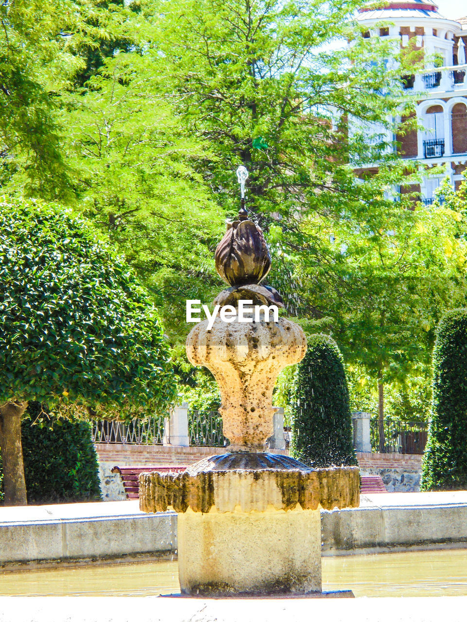 tree, statue, sculpture, fountain, outdoors, day, no people, nature, plant, water, architecture