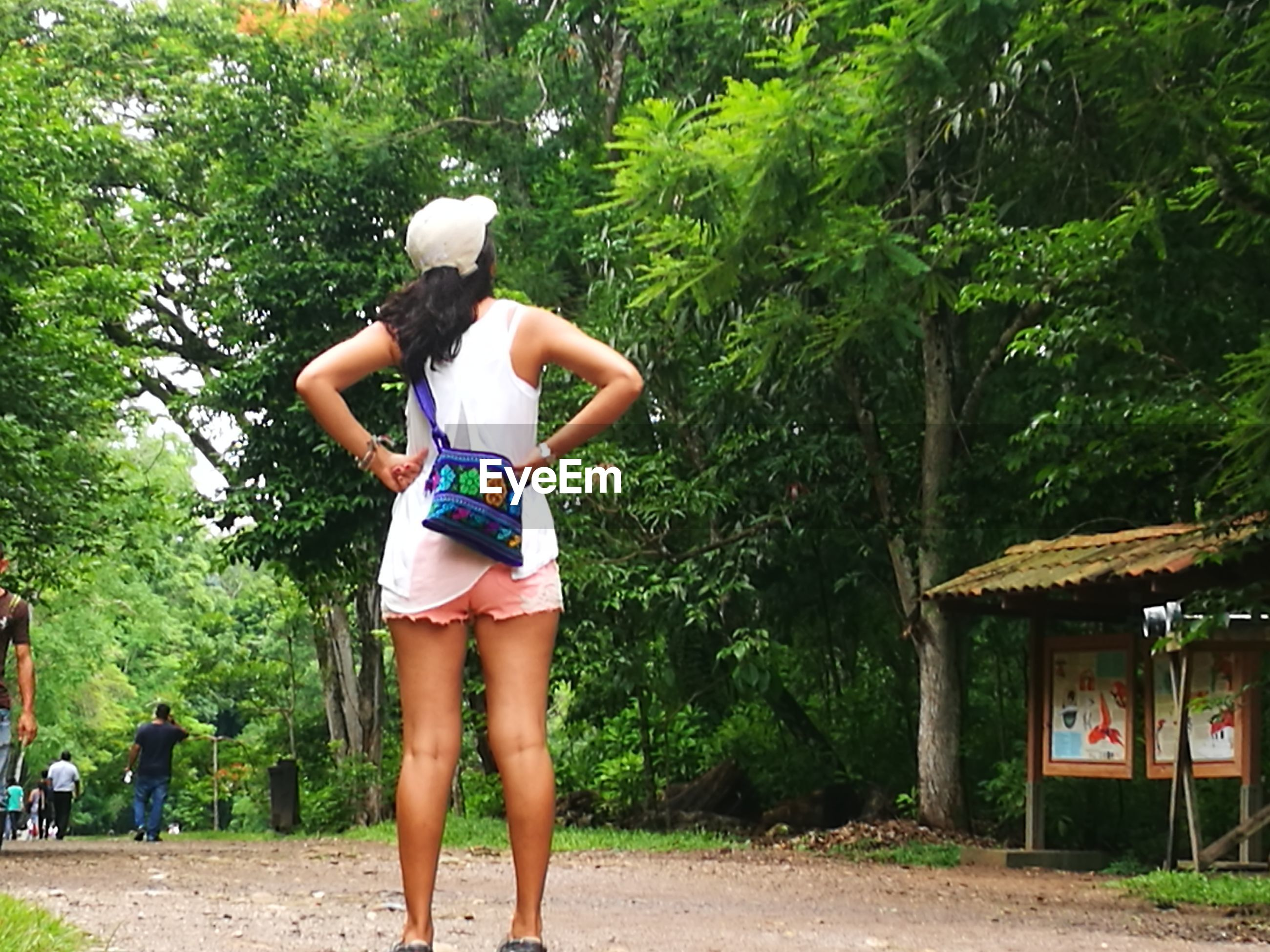 real people, tree, outdoors, day, leisure activity, one person, rear view, lifestyles, casual clothing, young adult, young women, standing, nature, growth, full length, beauty in nature