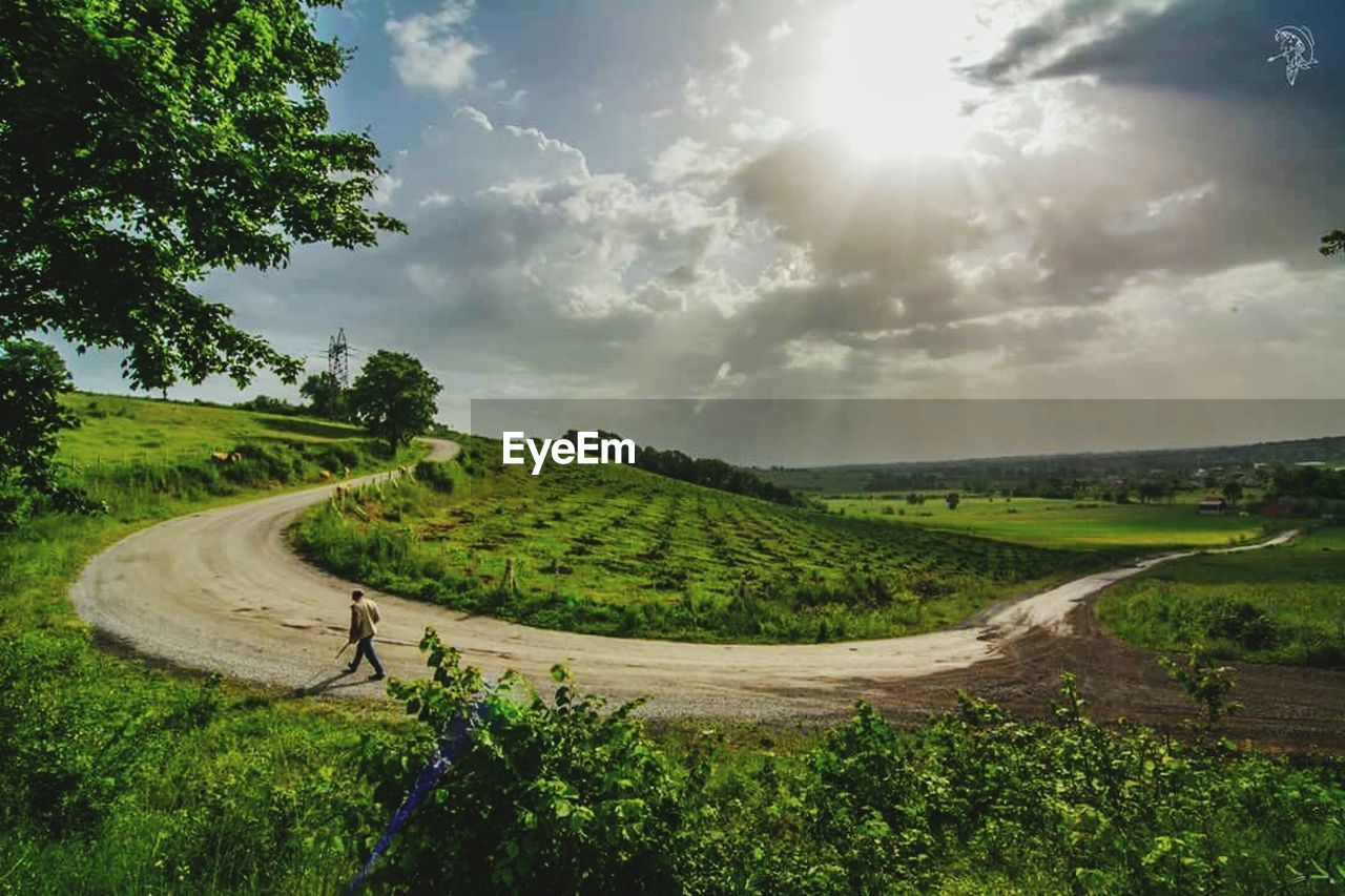 landscape, sky, tree, scenics, nature, tranquil scene, beauty in nature, rural scene, no people, cloud - sky, outdoors, road, field, day, tranquility, winding road, agriculture, growth, grass
