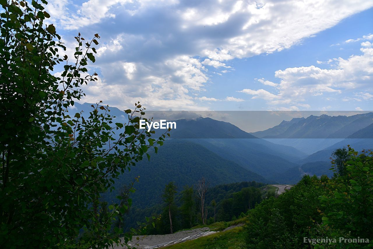 sky, mountain, tree, cloud - sky, plant, beauty in nature, scenics - nature, nature, growth, tranquility, environment, landscape, no people, tranquil scene, non-urban scene, day, outdoors, green color, mountain range, travel, mountain peak, range