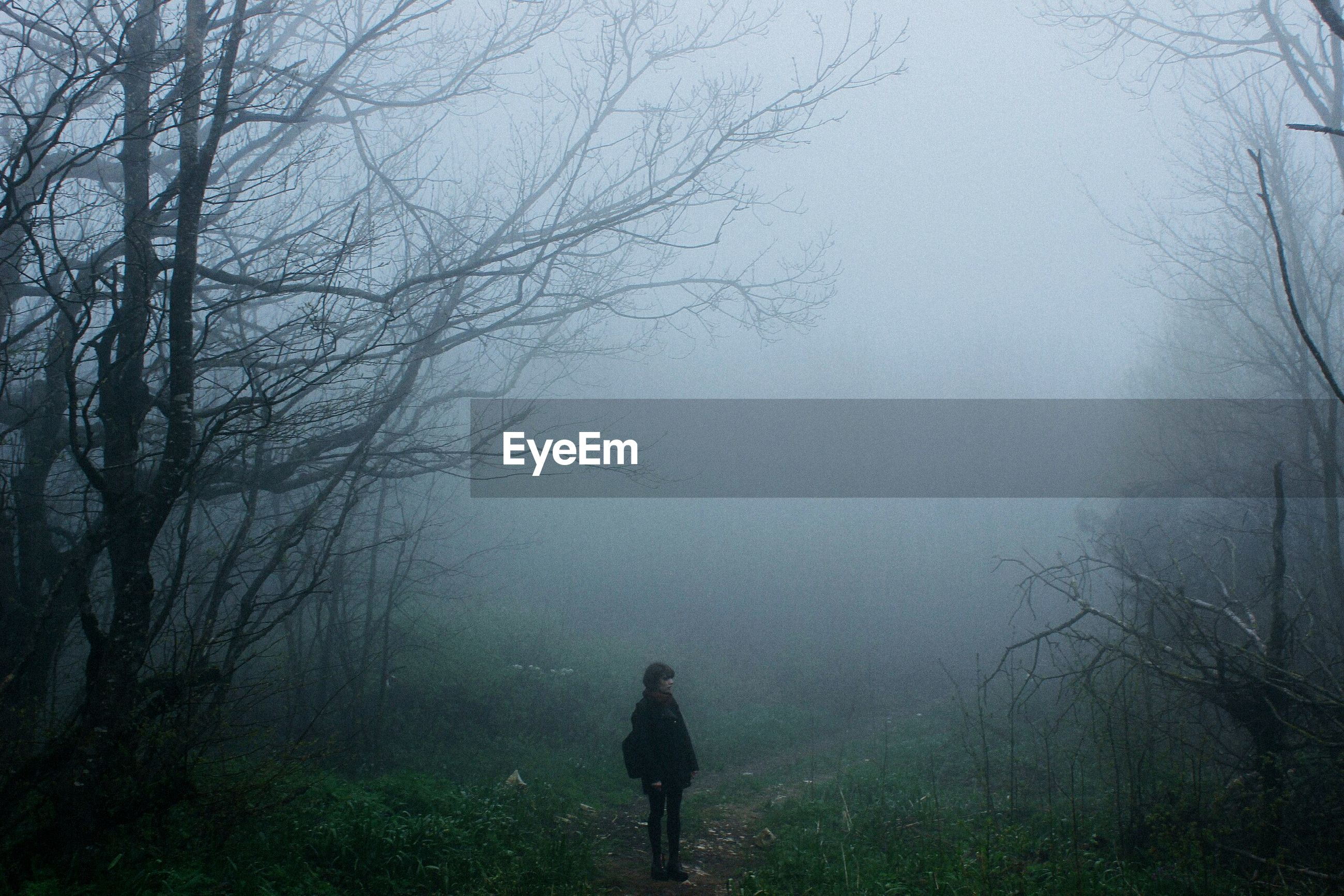 Lone person in foggy forest