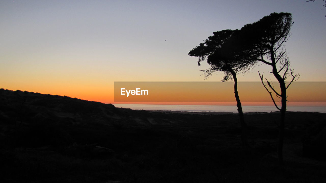 sky, sunset, tranquility, scenics - nature, silhouette, tranquil scene, beauty in nature, tree, plant, land, water, nature, no people, sea, copy space, beach, horizon, orange color, non-urban scene, horizon over water, outdoors