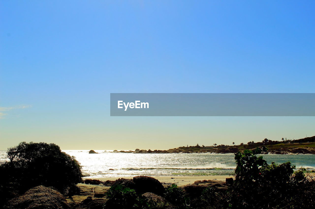 water, sky, copy space, sea, clear sky, scenics - nature, beauty in nature, nature, land, beach, tranquility, tranquil scene, blue, tree, plant, no people, day, outdoors, idyllic