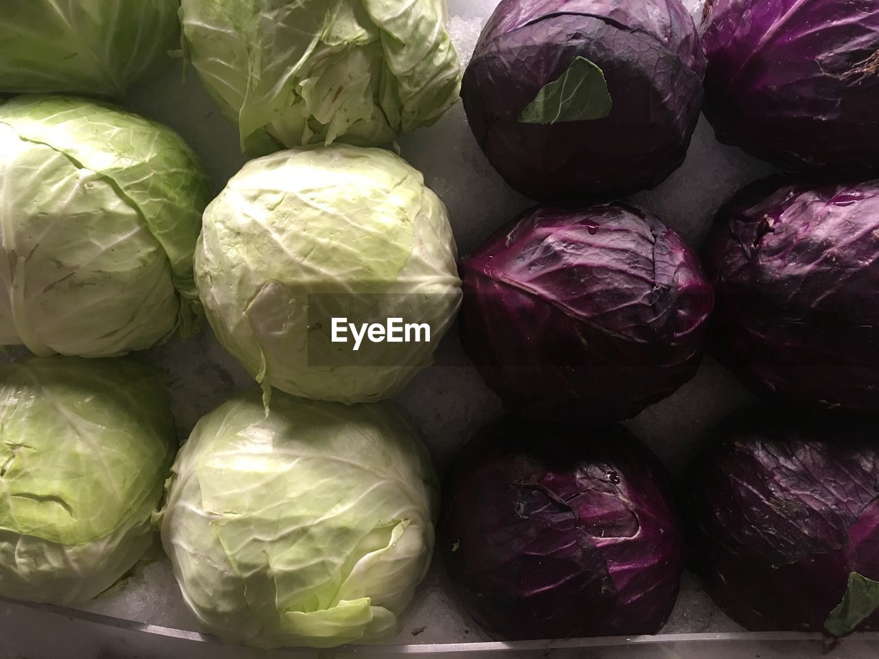 food and drink, food, freshness, still life, no people, healthy eating, indoors, backgrounds, close-up, wellbeing, full frame, vegetable, cabbage, for sale, large group of objects, green color, retail, group of objects, choice, market, purple
