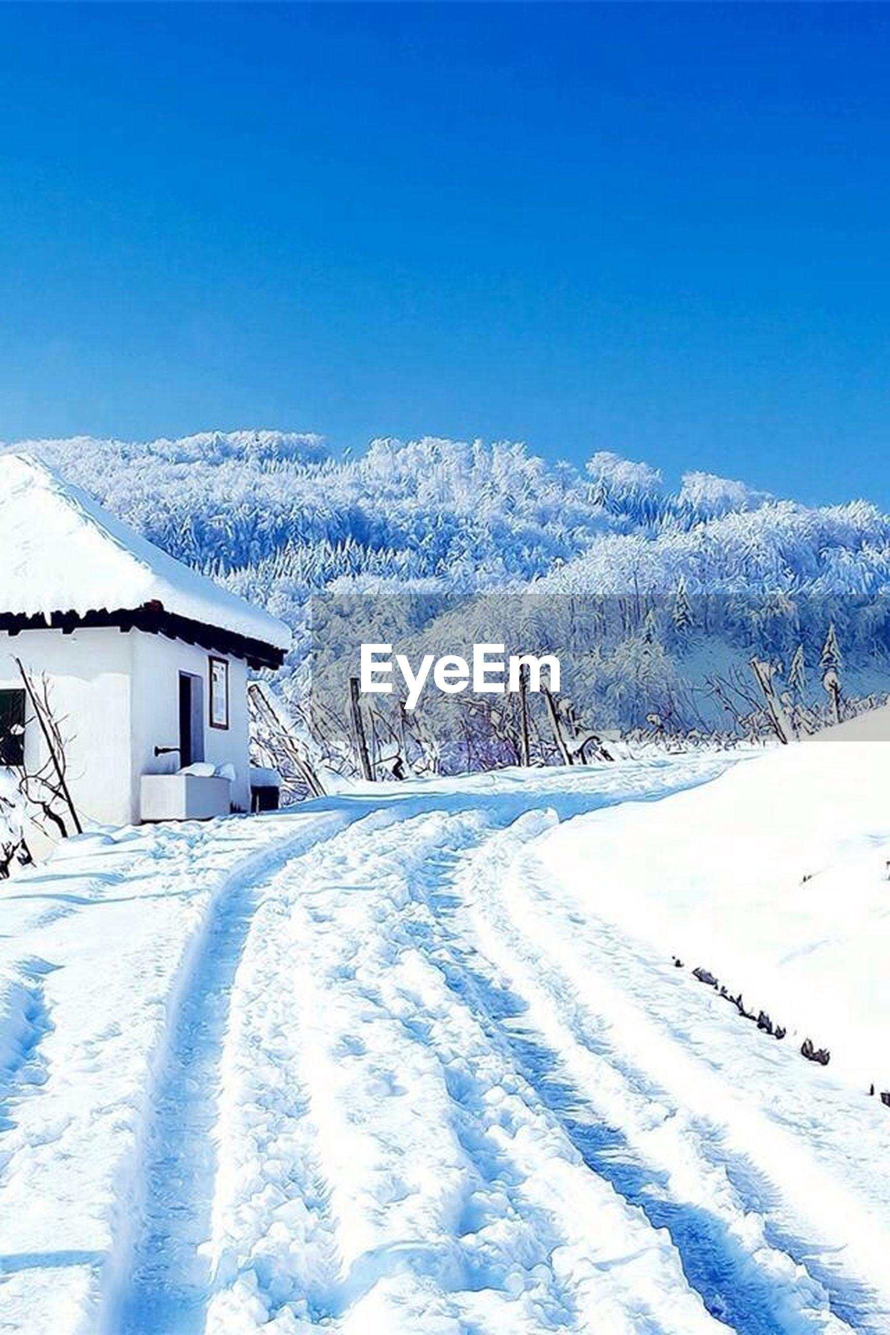 snow, winter, cold temperature, season, weather, clear sky, covering, landscape, white color, blue, snowcapped mountain, copy space, mountain, house, building exterior, snow covered, tranquil scene, nature, covered, frozen