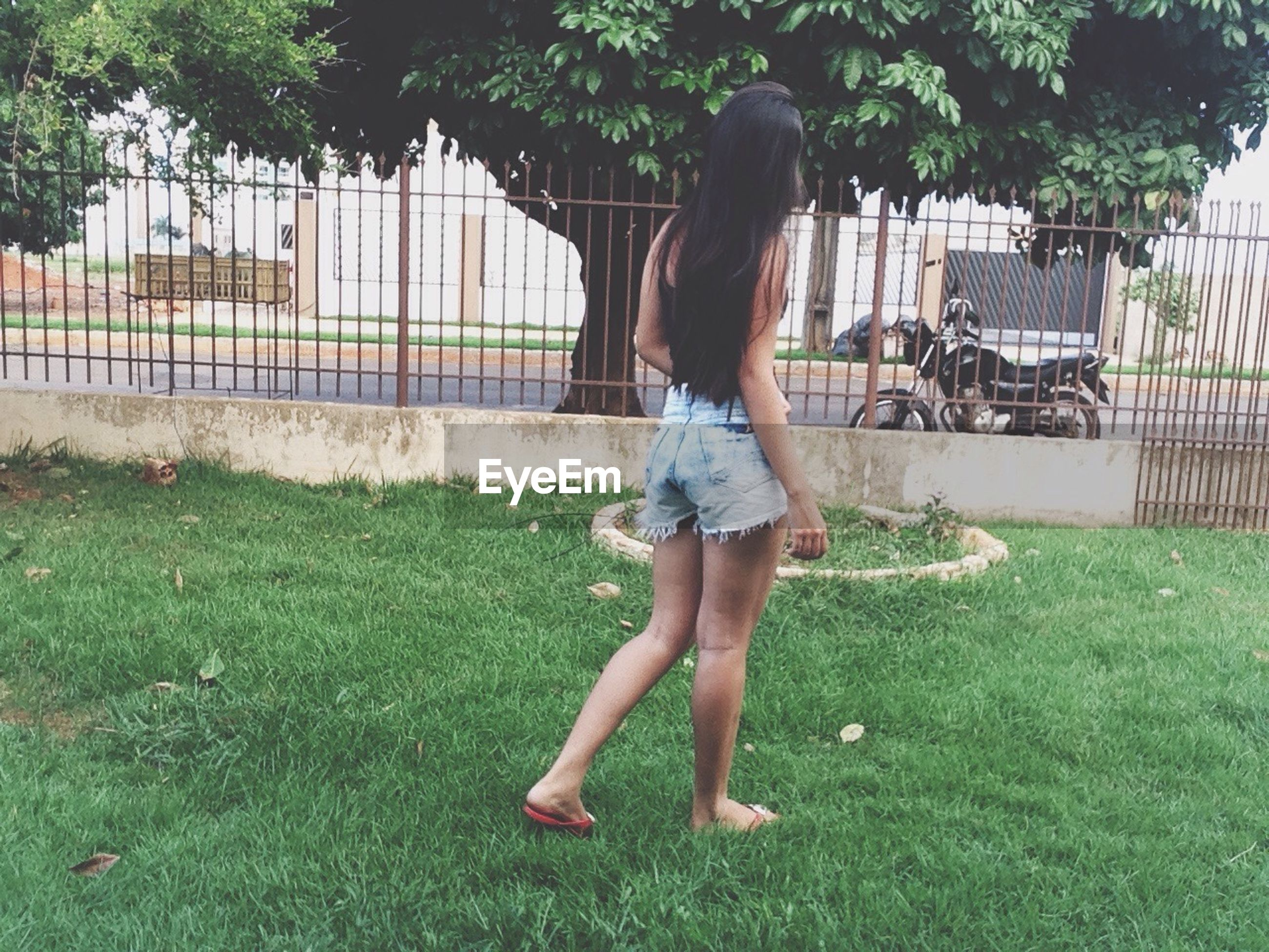 grass, full length, lifestyles, childhood, casual clothing, leisure activity, park - man made space, grassy, elementary age, girls, playing, person, standing, rear view, green color, field, lawn, boys