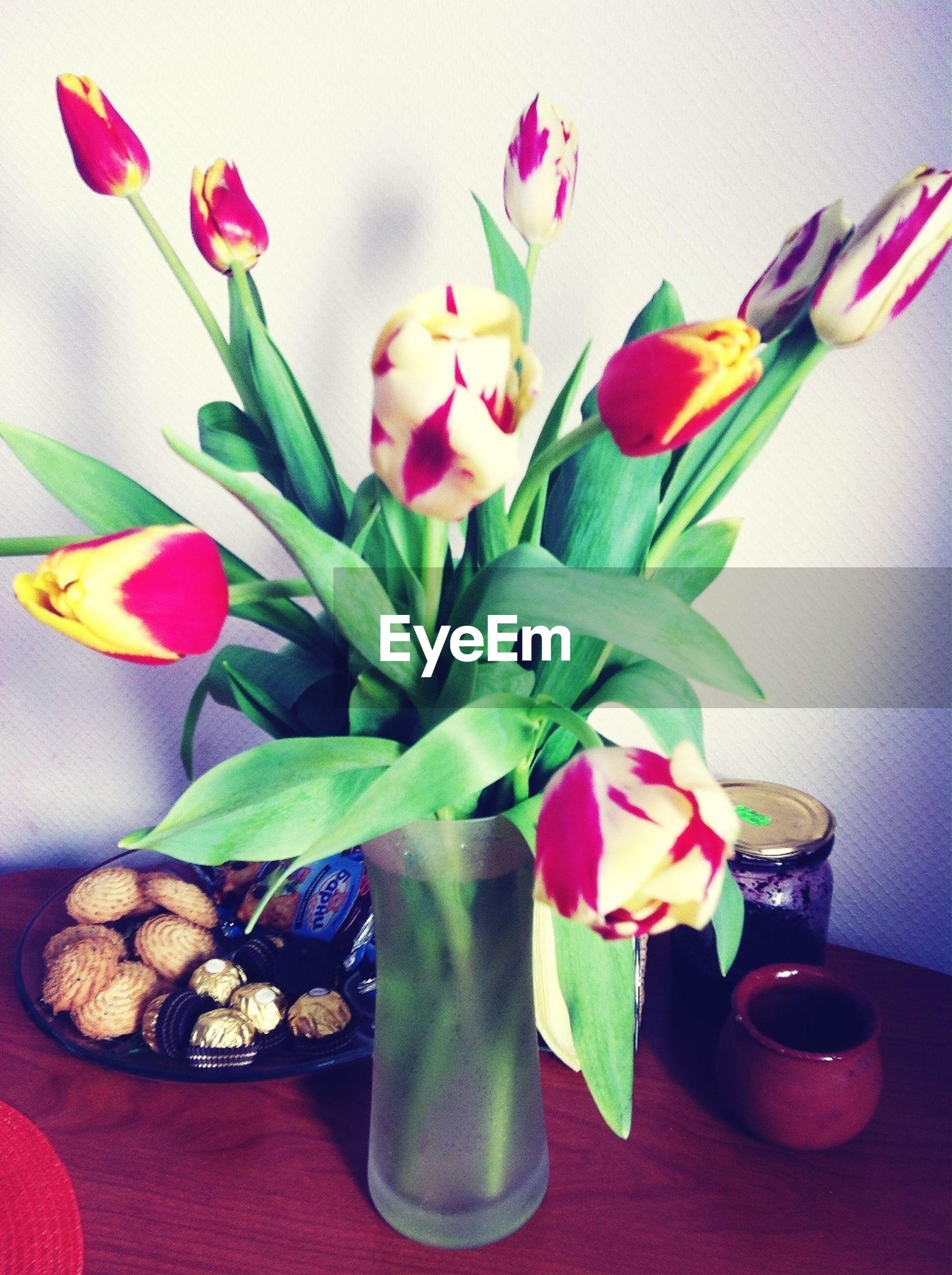 flower, indoors, vase, freshness, fragility, petal, table, flower head, decoration, close-up, flower arrangement, tulip, still life, home interior, pink color, potted plant, variation, stem, bouquet, bunch of flowers