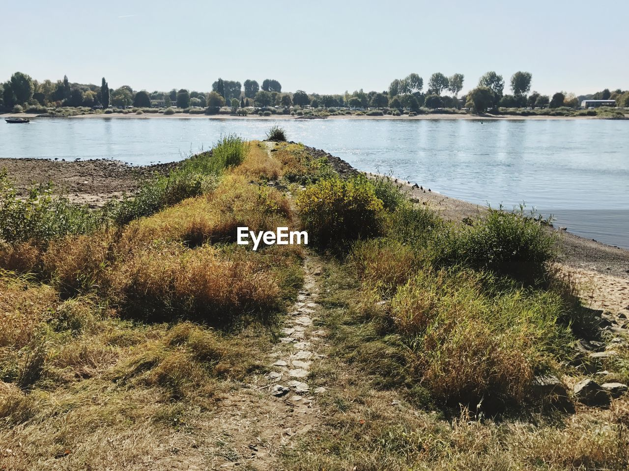 Trail on grassy lakeshore against sky