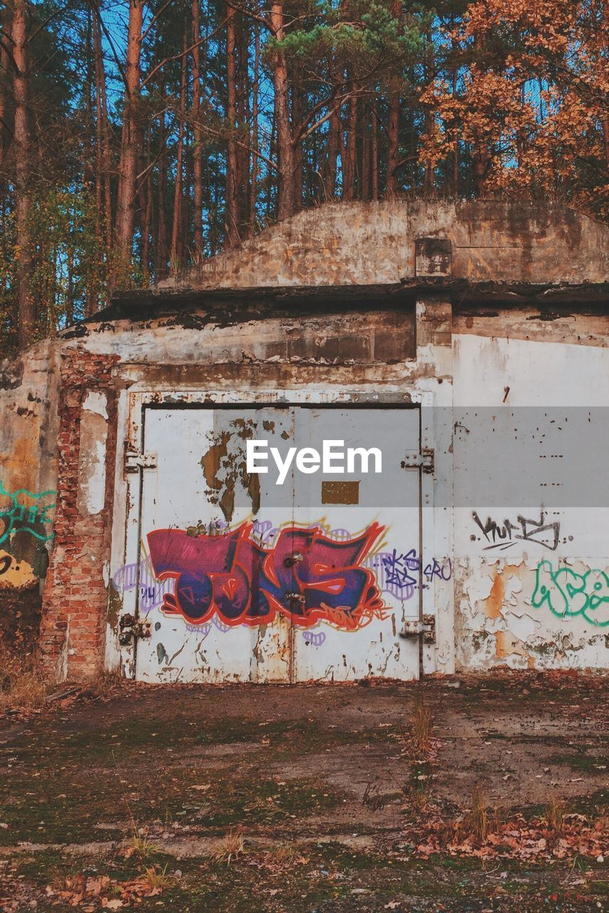 graffiti, tree, built structure, day, outdoors, architecture, no people, building exterior, red, multi colored, close-up
