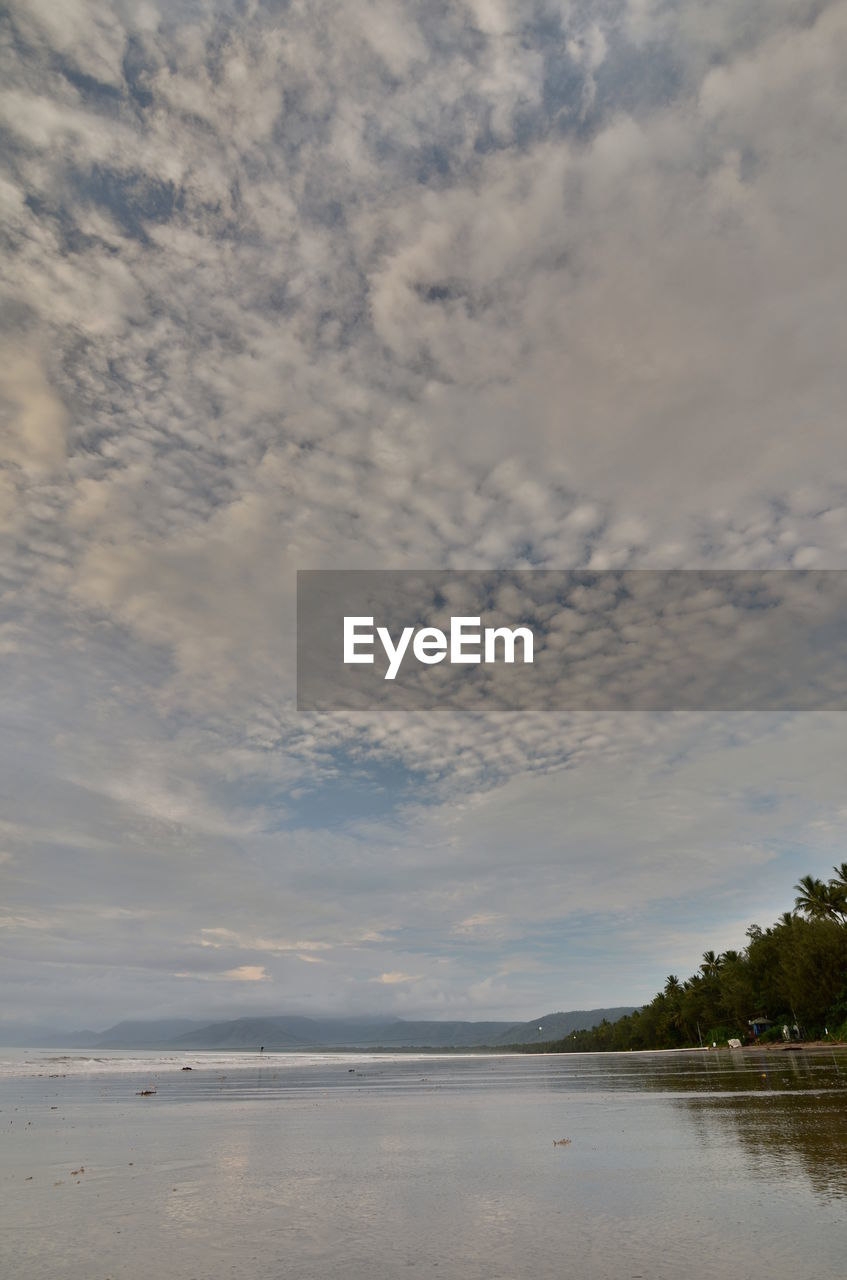 cloud - sky, sky, water, beauty in nature, scenics - nature, sea, tranquility, tranquil scene, nature, no people, beach, tree, waterfront, plant, outdoors, day, land, idyllic