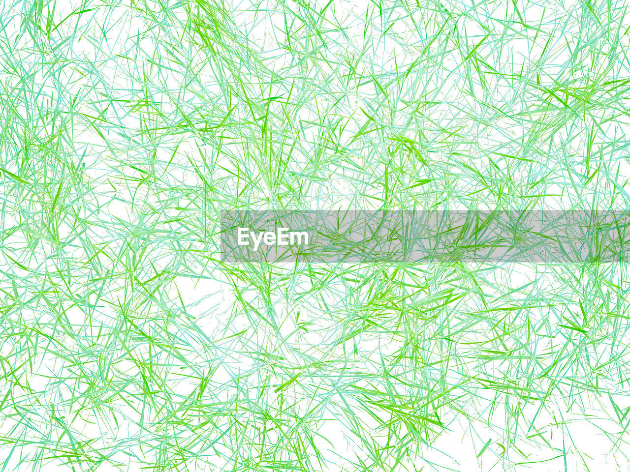 backgrounds, green color, no people, full frame, abstract, pattern, extreme close-up, textured, white color, close-up, macro, nature, food and drink, food, textured effect, paper, environmental issues, beauty, abstract backgrounds, outdoors, tangled