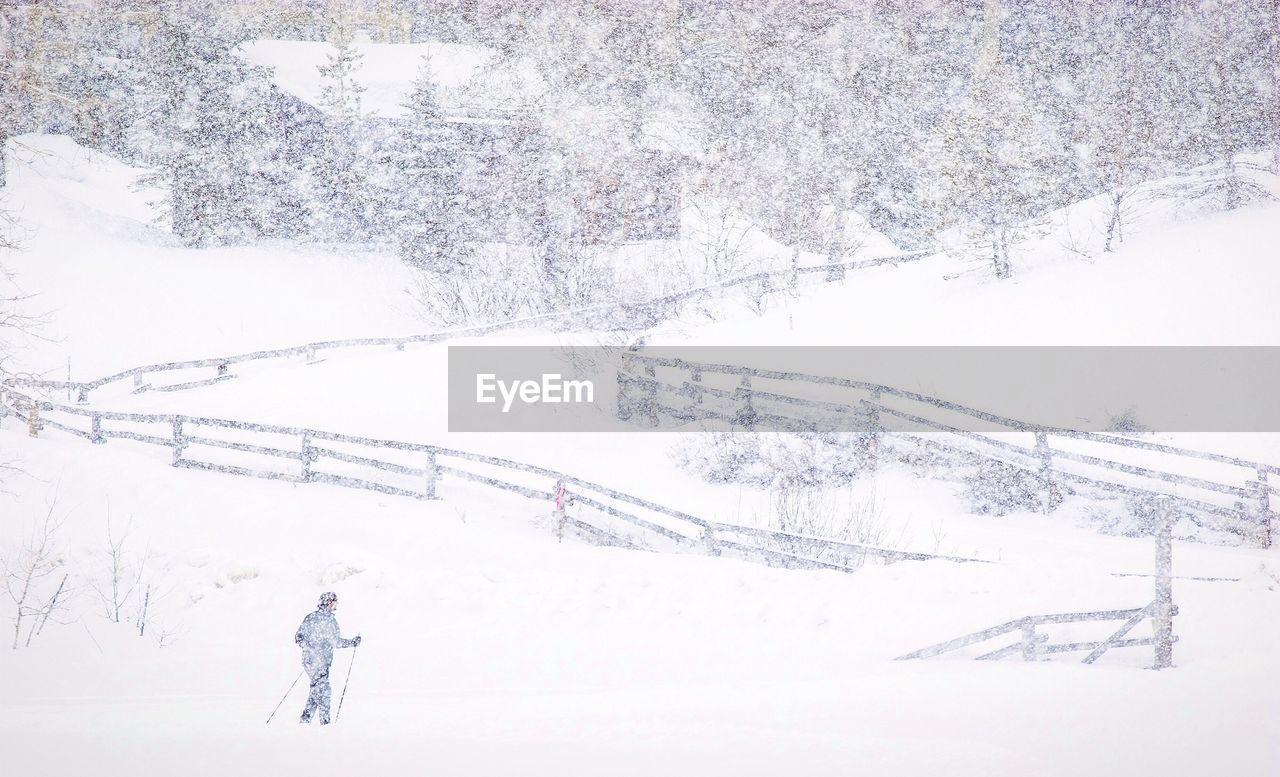 Person On Snowy Field