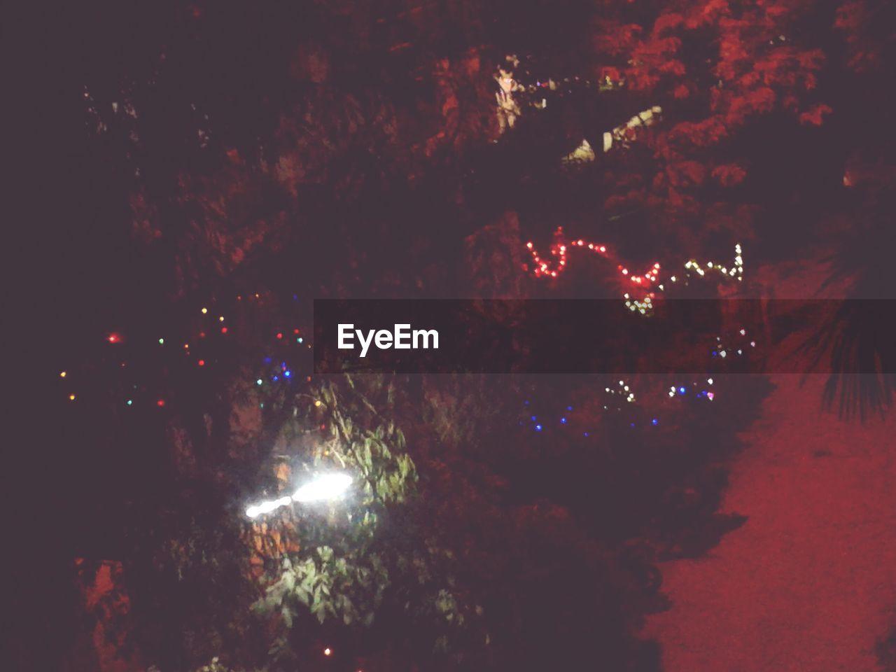 night, celebration, illuminated, tree, christmas, no people, outdoors, christmas decoration, growth, nature, beauty in nature