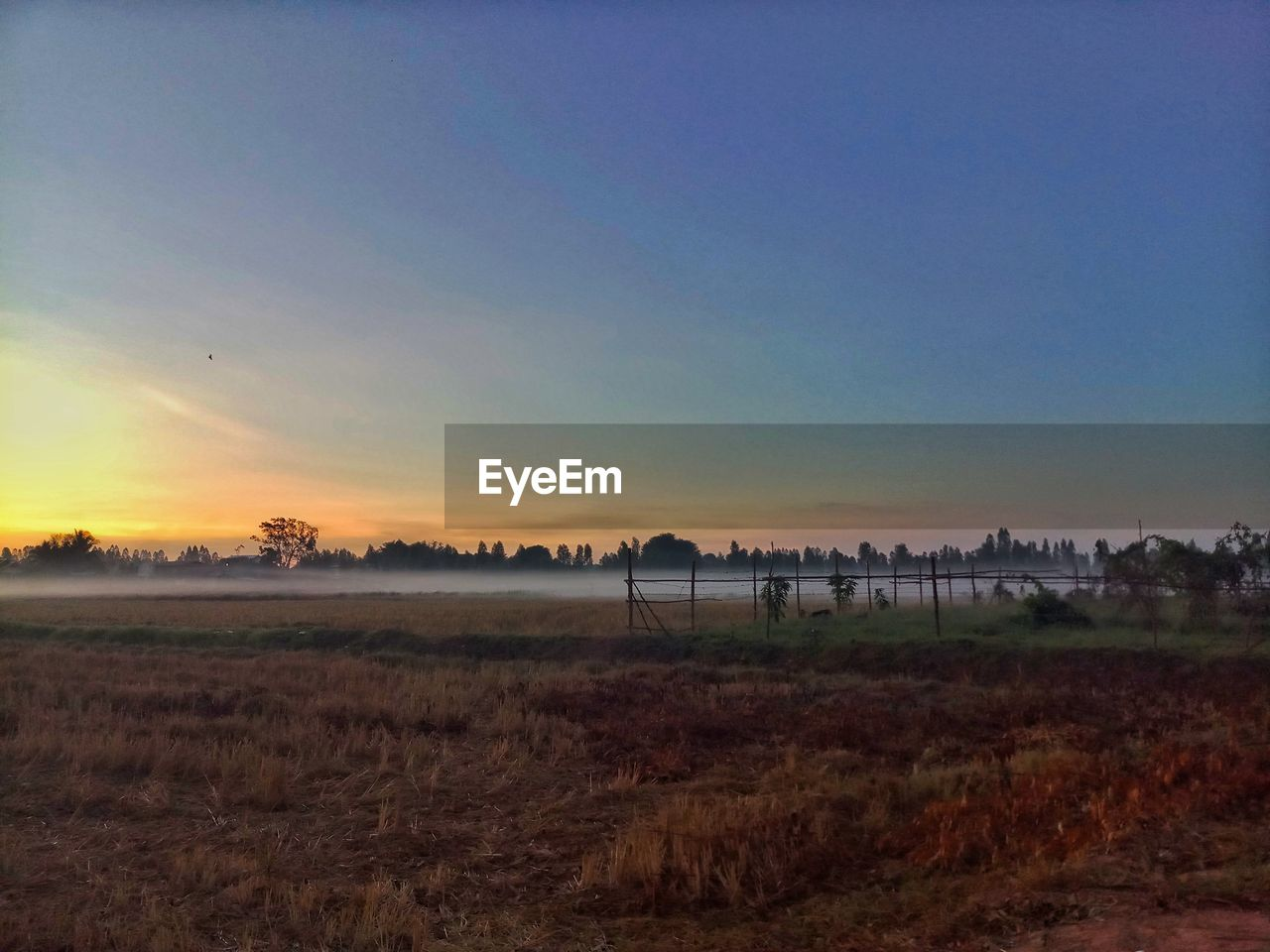 sky, scenics - nature, tranquility, environment, tranquil scene, sunset, landscape, beauty in nature, land, nature, field, plant, no people, copy space, non-urban scene, grass, orange color, outdoors, idyllic, cloud - sky
