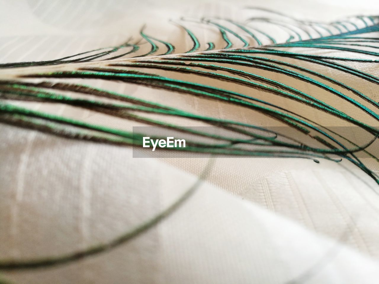 selective focus, textile, close-up, still life, indoors, no people, pattern, table, green color, bed, white color, high angle view, paper, cable, complexity, furniture, day, thread, striped, multi colored
