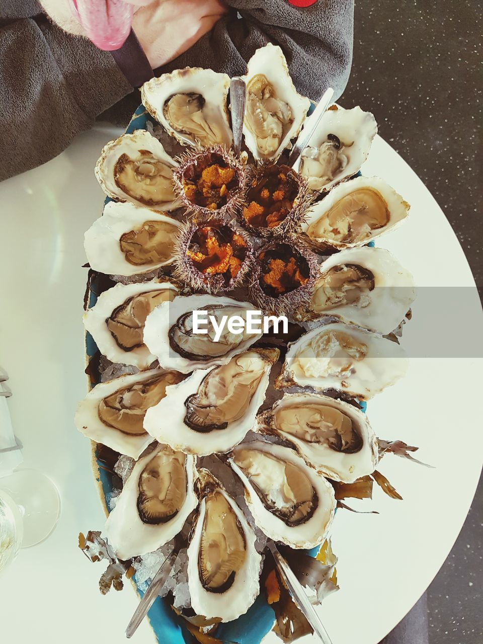 High Angle View Of Oysters In Plate On Table