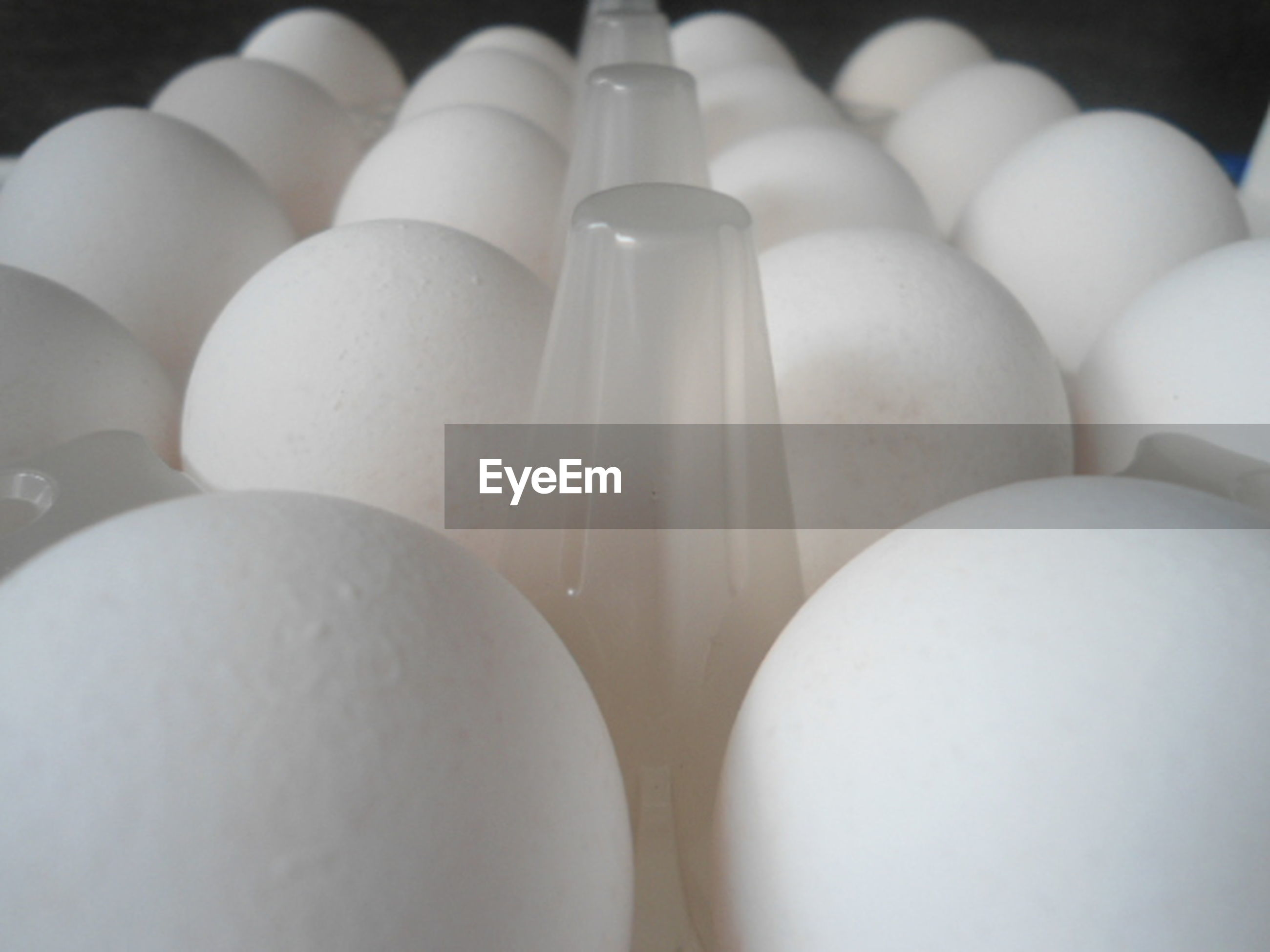 egg, white color, in a row, no people, food and drink, large group of objects, indoors, close-up, egg carton, fragility, healthy eating, food, day