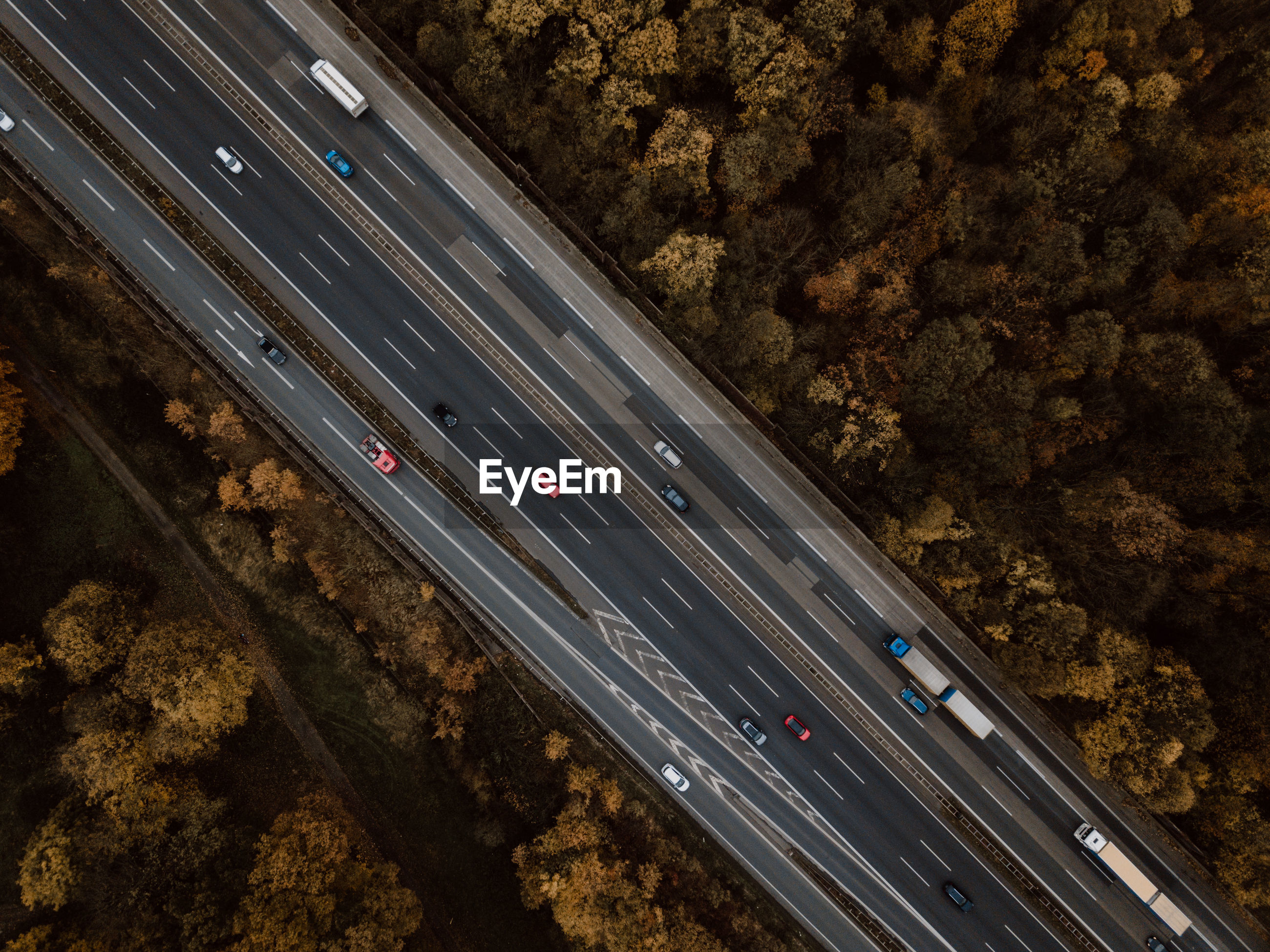 High angle view of cars moving on road amidst trees