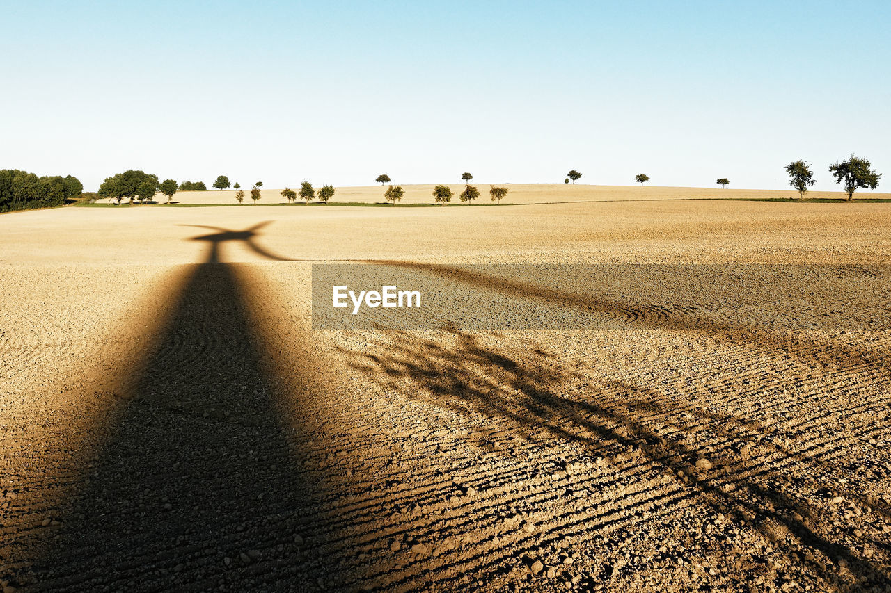 sky, land, landscape, nature, environment, plant, one person, field, sunlight, clear sky, day, shadow, tranquil scene, scenics - nature, rural scene, real people, agriculture, tranquility, sand, tree, outdoors, focus on shadow