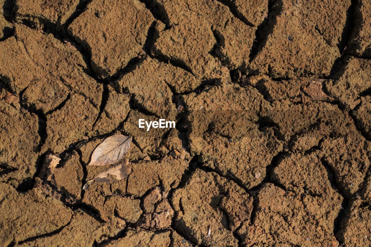 FULL FRAME SHOT OF DRY CRACKED LAND