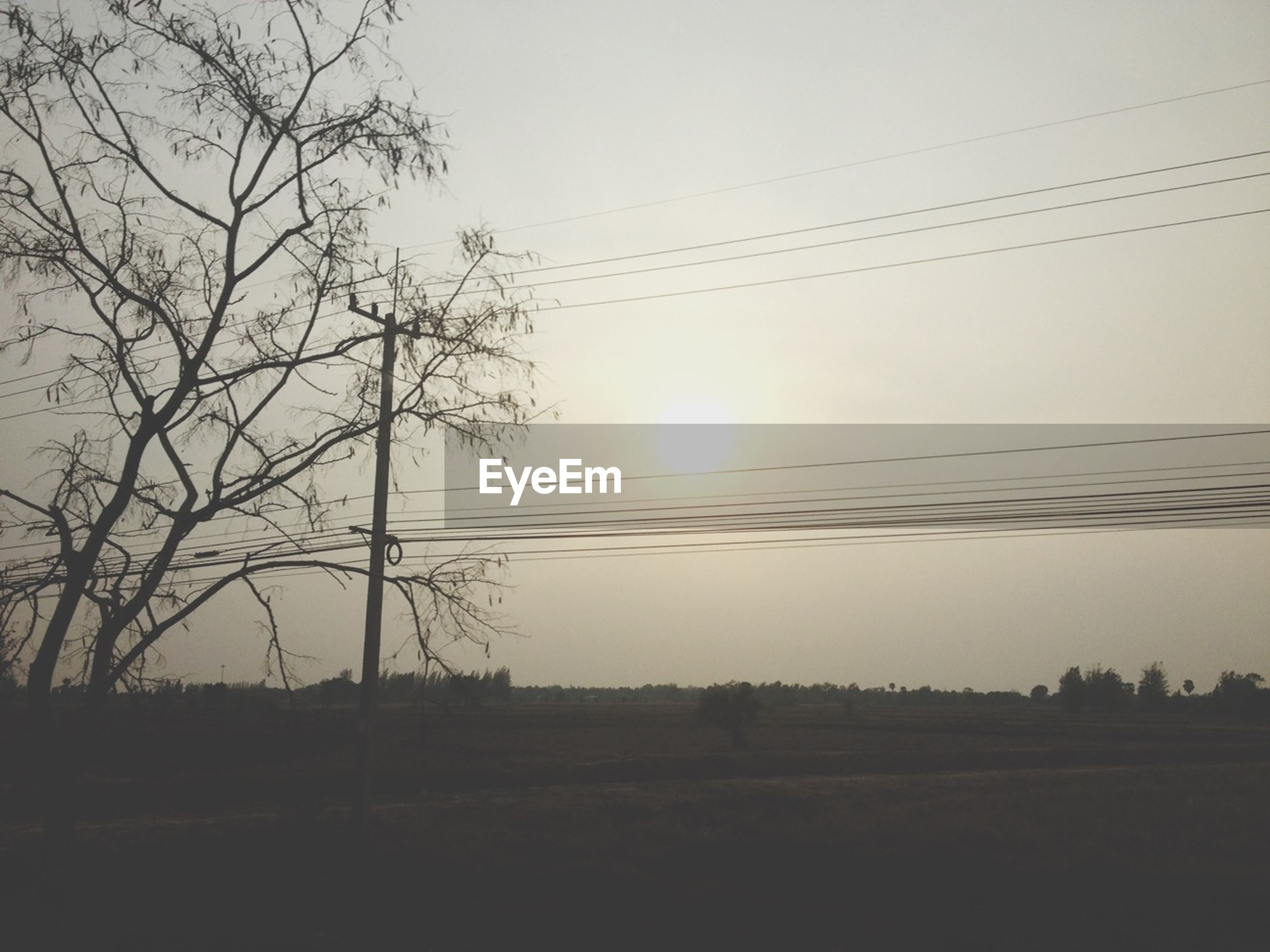 sun, sunset, tranquility, tranquil scene, silhouette, scenics, beauty in nature, sky, landscape, nature, power line, tree, field, electricity pylon, sunlight, clear sky, idyllic, bare tree, outdoors, no people