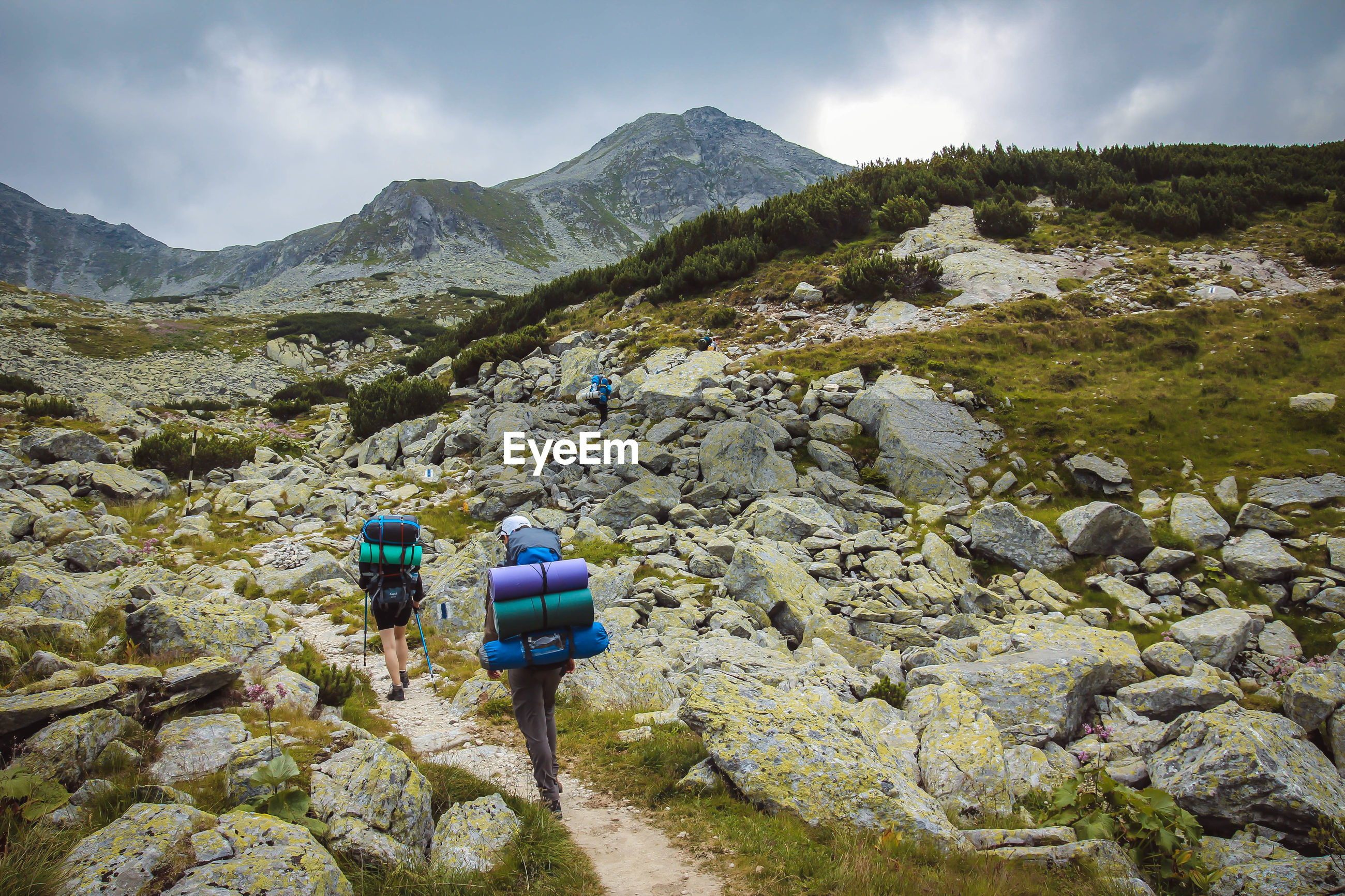 Rear view of people walking on mountains against sky