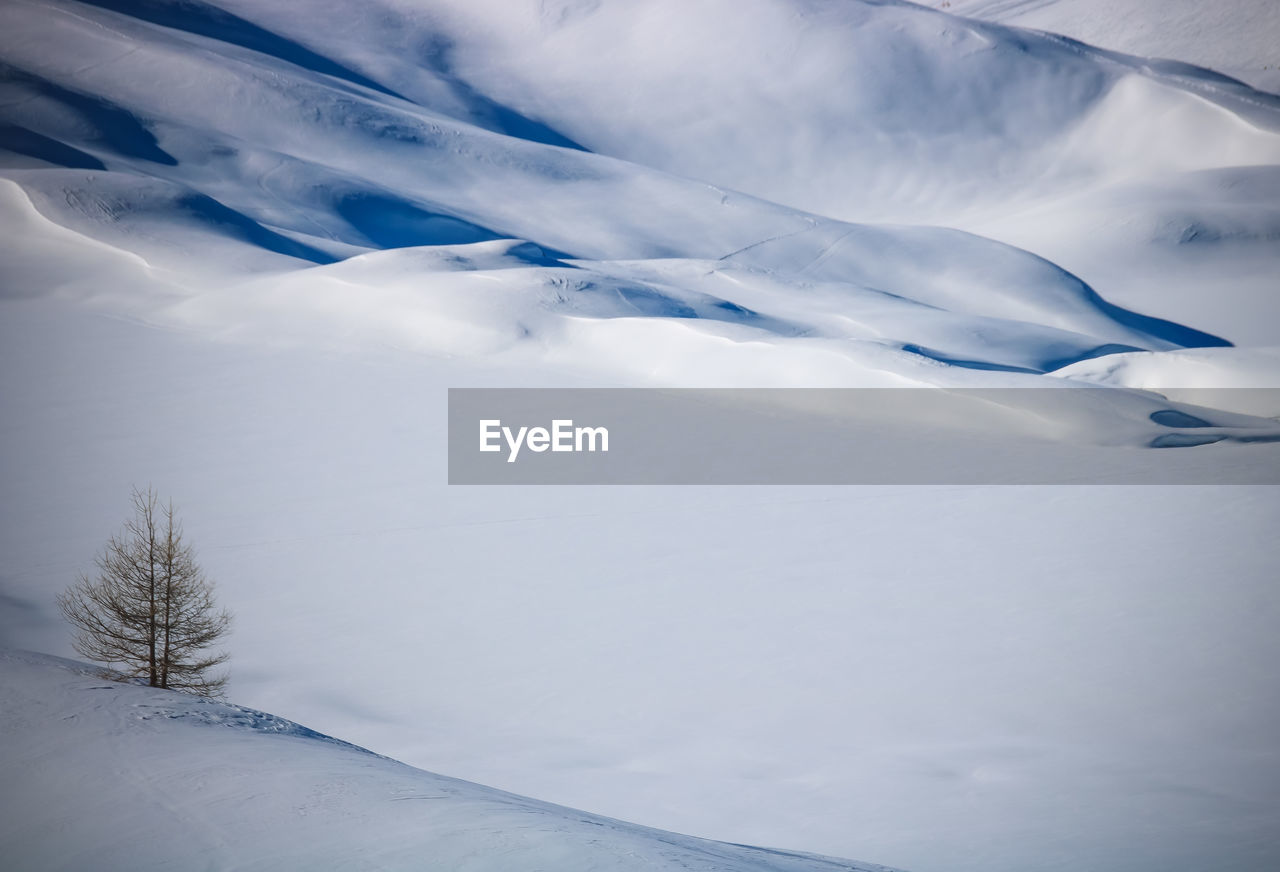 snow, winter, cold temperature, beauty in nature, white color, scenics - nature, no people, tranquil scene, tranquility, covering, environment, nature, landscape, mountain, day, non-urban scene, plant, cloud - sky, tree, snowcapped mountain, mountain peak