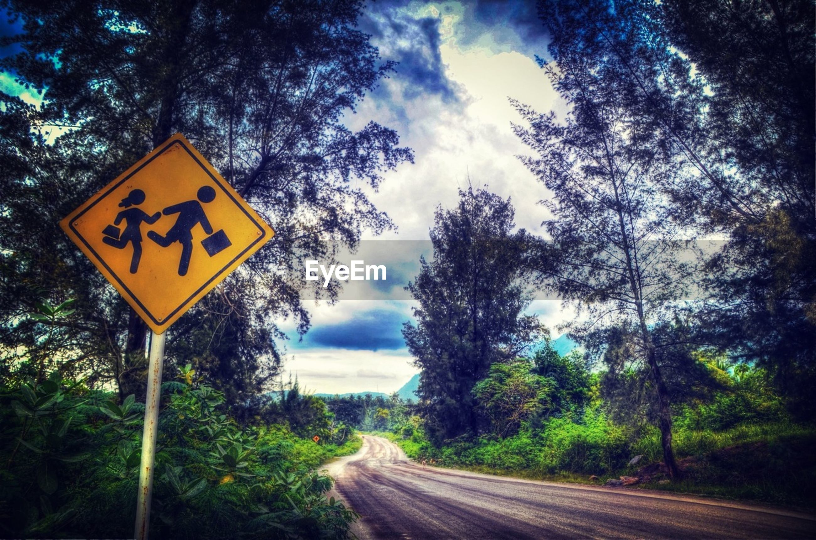 text, tree, communication, road sign, western script, sky, information sign, sign, guidance, road, cloud - sky, the way forward, directional sign, yellow, nature, arrow symbol, warning sign, transportation, direction, information