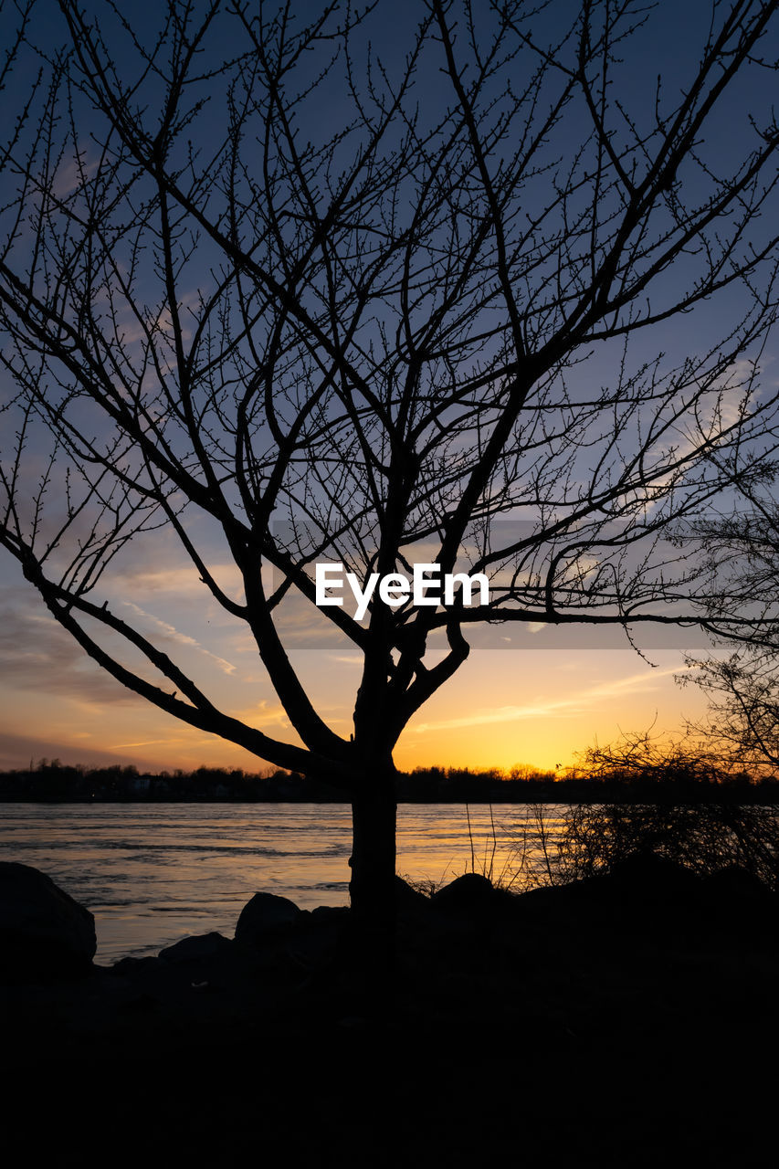 sunset, sky, silhouette, beauty in nature, scenics - nature, tranquility, bare tree, tree, water, tranquil scene, orange color, nature, cloud - sky, branch, no people, lake, outdoors, idyllic, plant