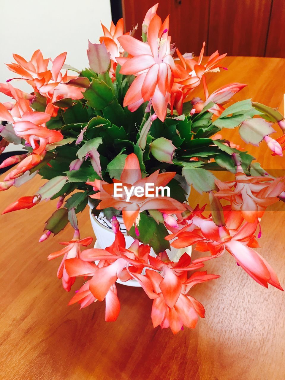 flower, orange color, petal, no people, close-up, indoors, flower head, freshness, fragility, table, beauty in nature, leaf, bouquet, nature, day
