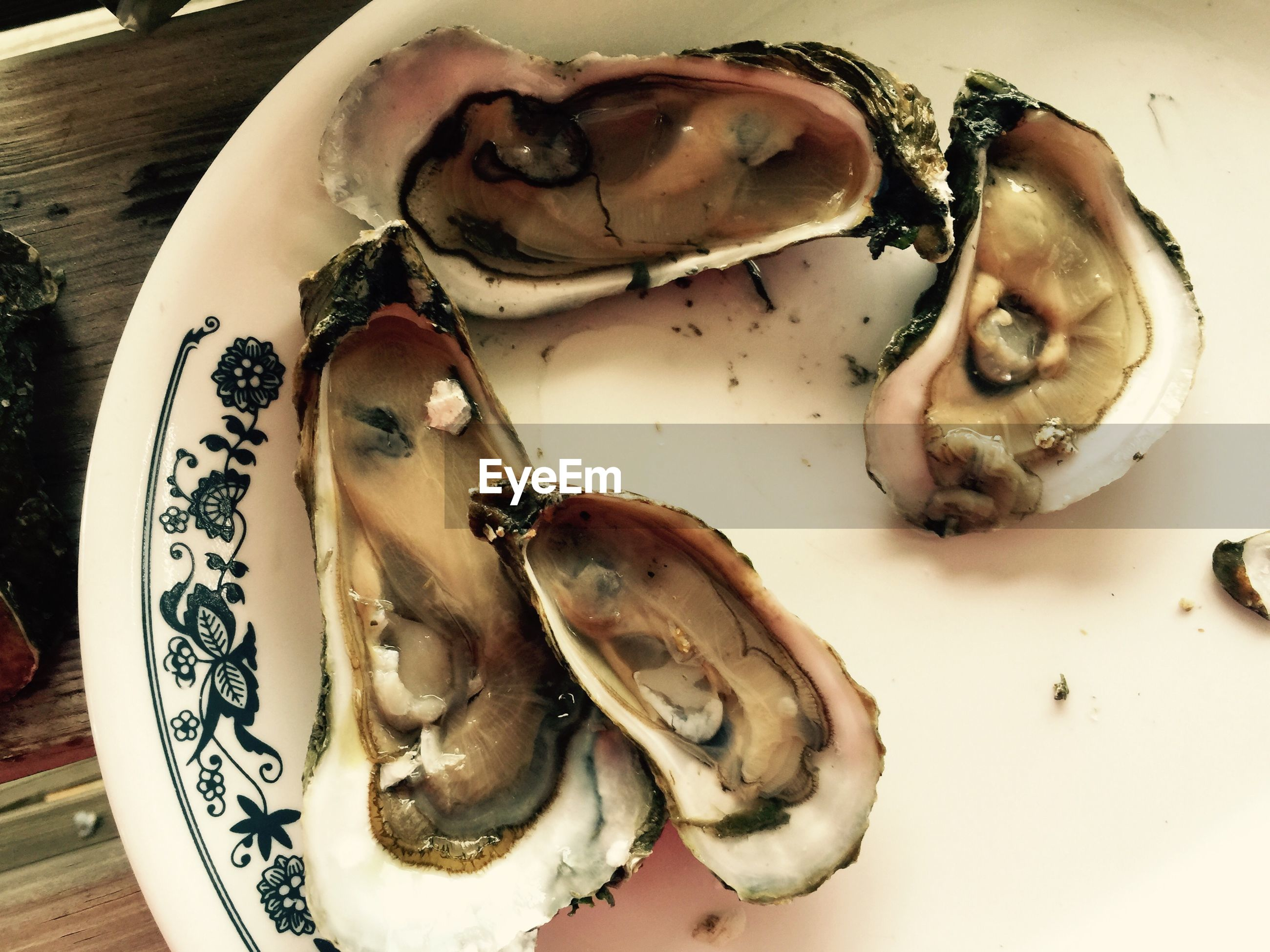 High angle view of oysters served in plate on table